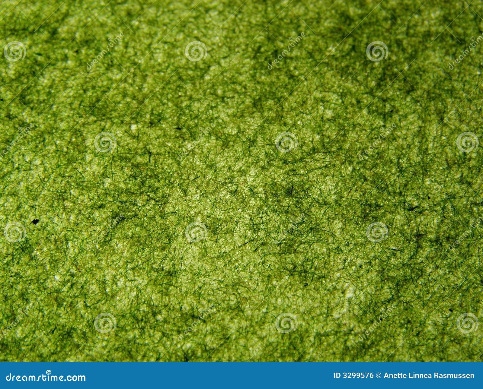 Grünes Büttenpapier