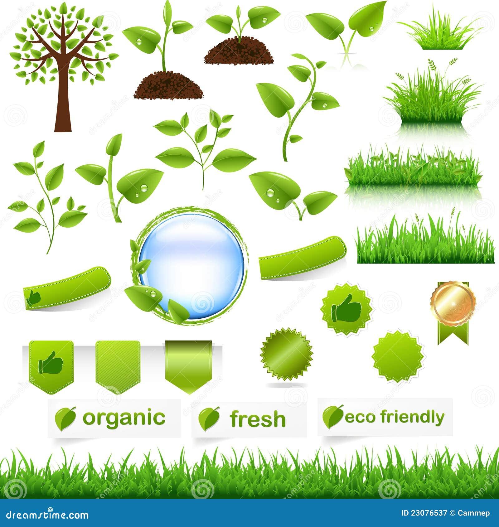 Grünes Eco Set