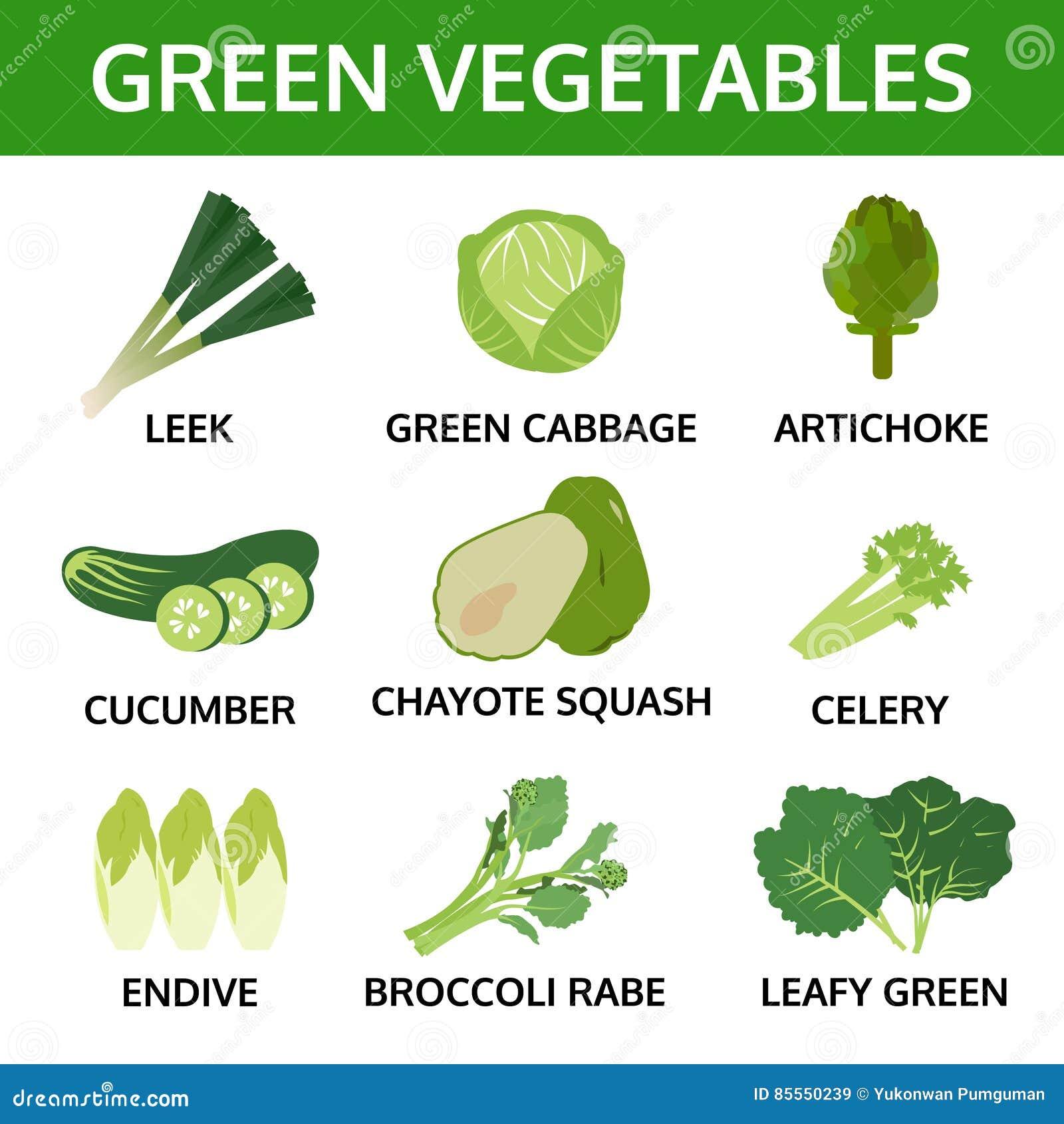Grünes Gemüse Sammlung, grafisches Lebensmittel der Informationen, Vektor