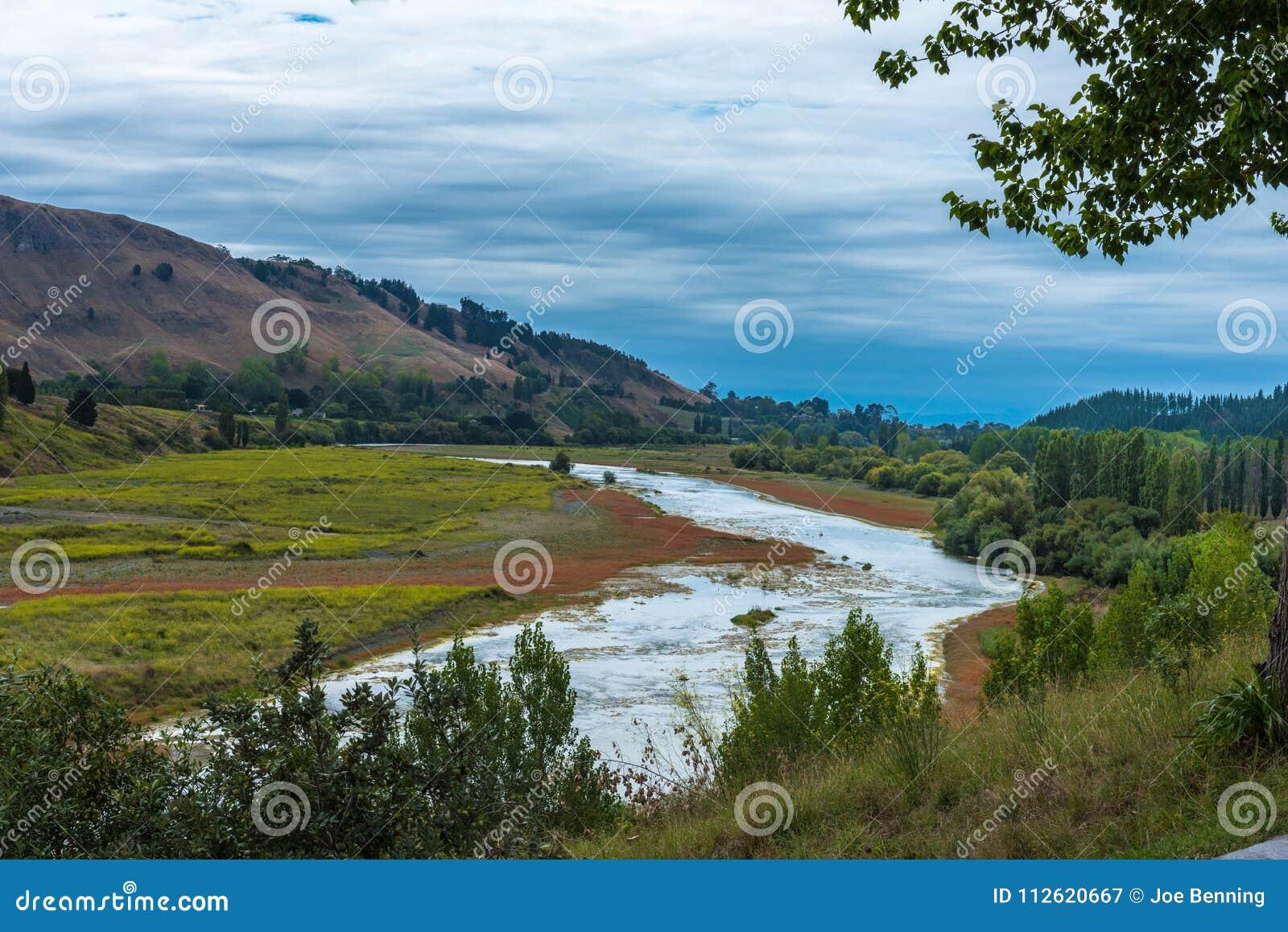 Grünes Tal in Neuseeland-Weinanbaugebiet