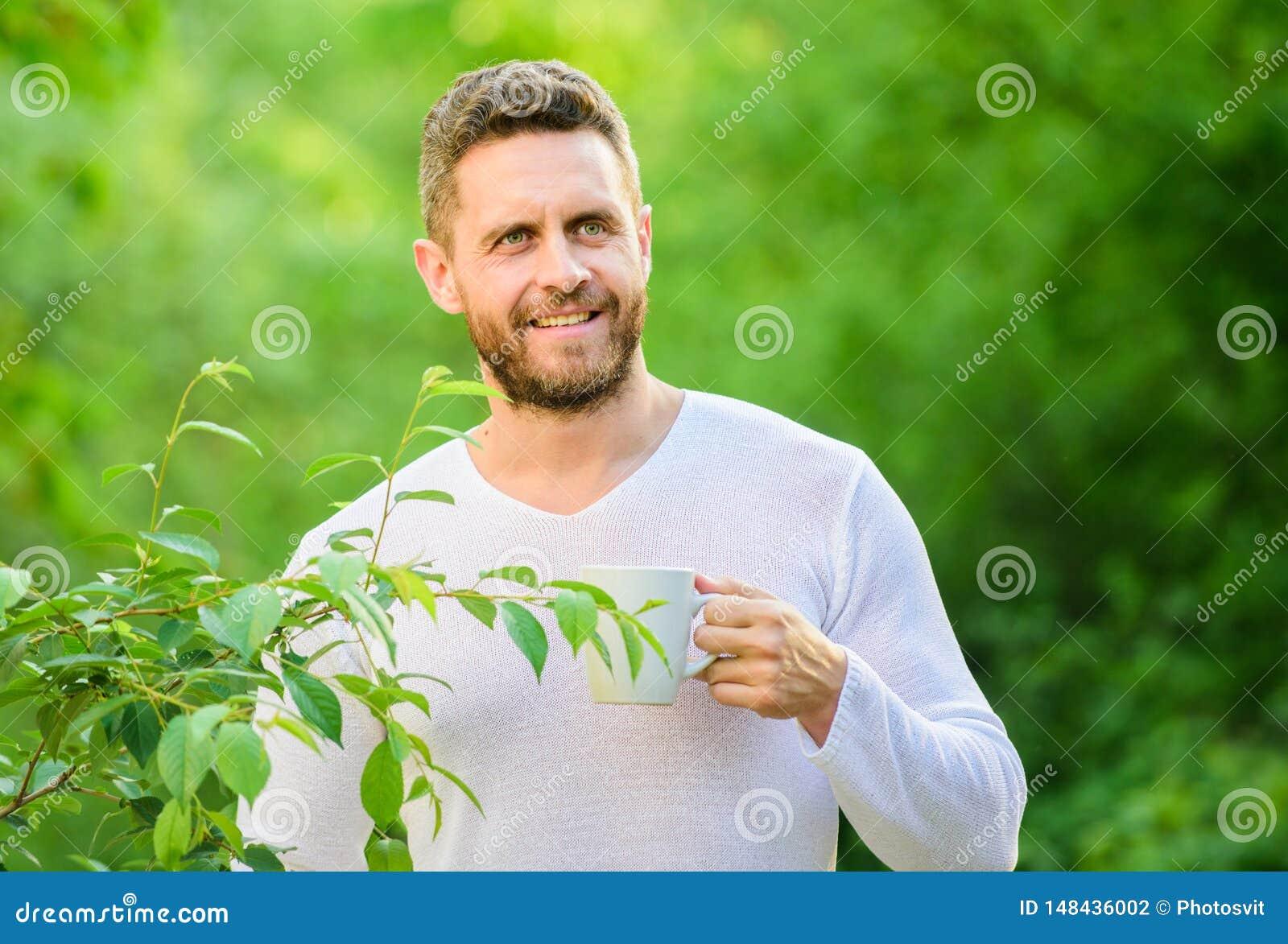 Gr?nt te inneh?ller bioactive sammans?ttningar som f?rb?ttrar h?lsa Naturlig drink Sund livsstil Jag f?redrar gr?nt te