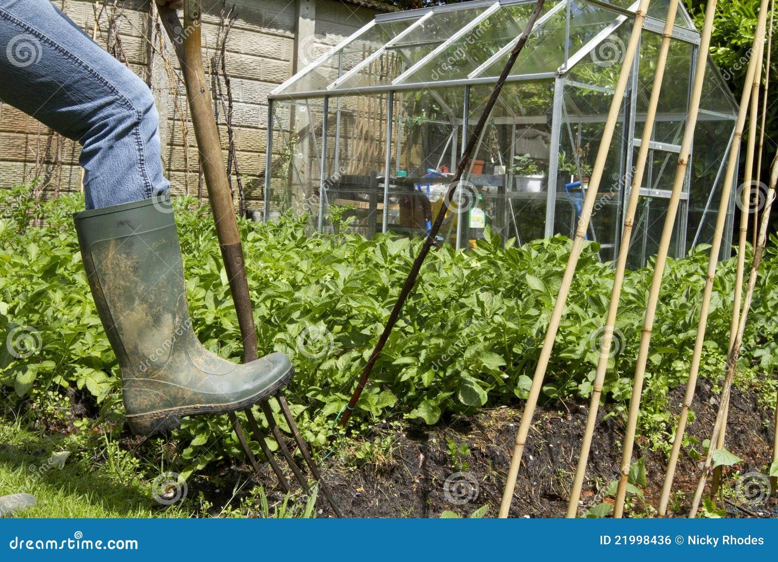 Grabungen im Garten mit Heugabel