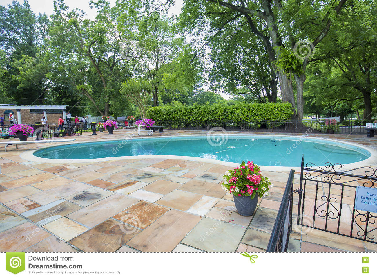 Graceland Swimming Pool editorial stock photo. Image of ...