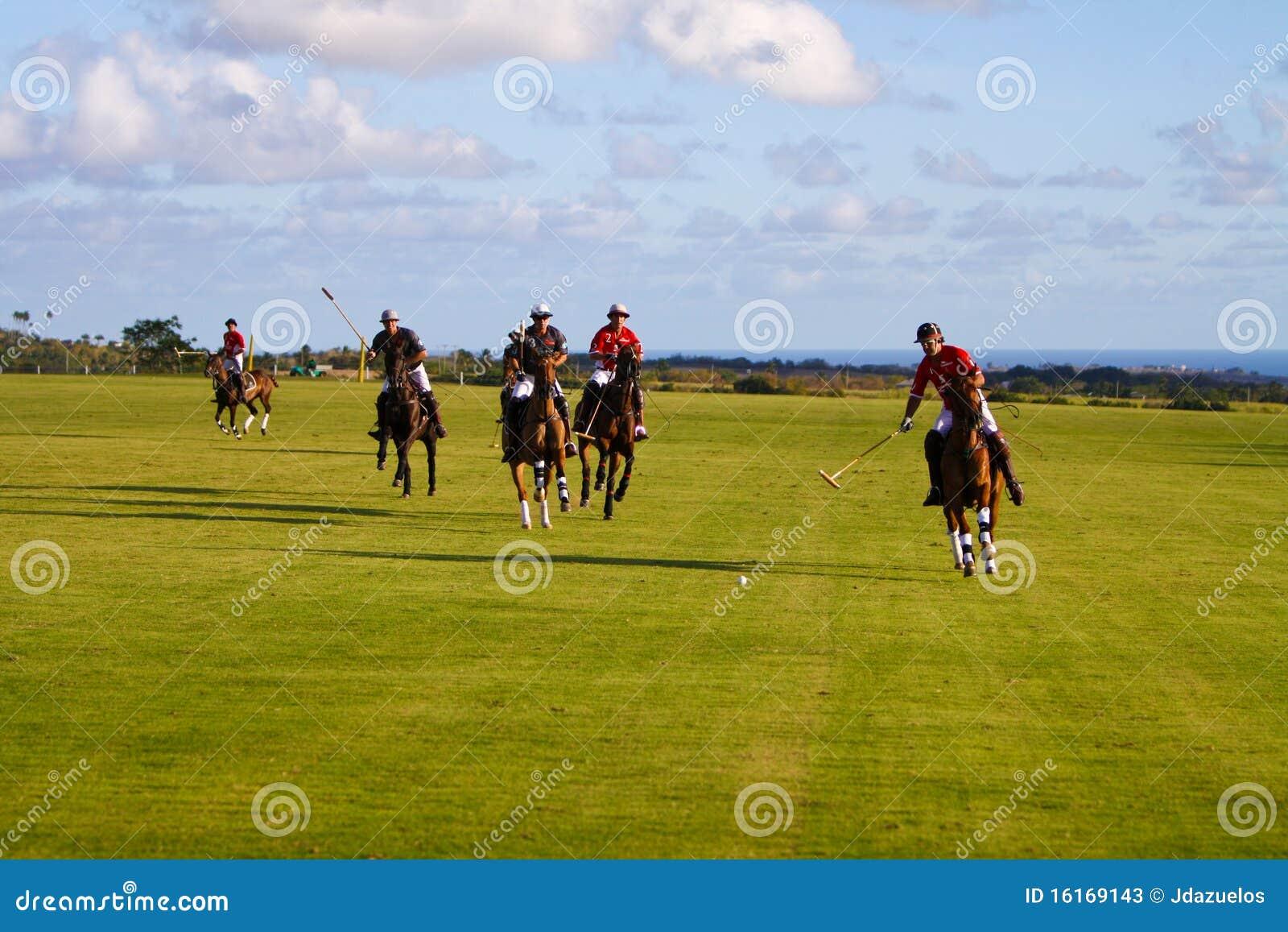 Gracza męski polo