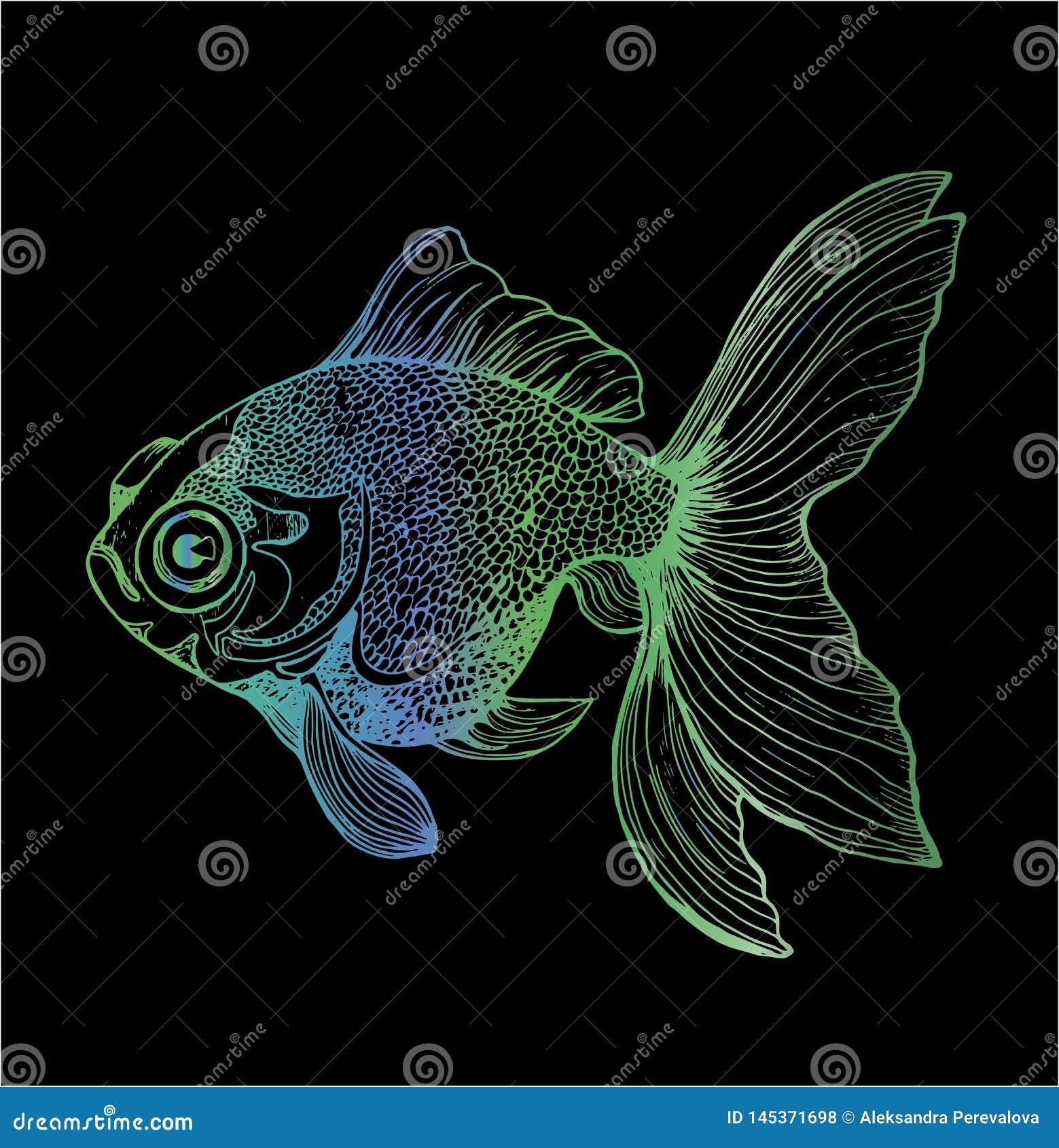 Gradientowa ilustracja ryba Czarny i bia?y karpiowy rysunek