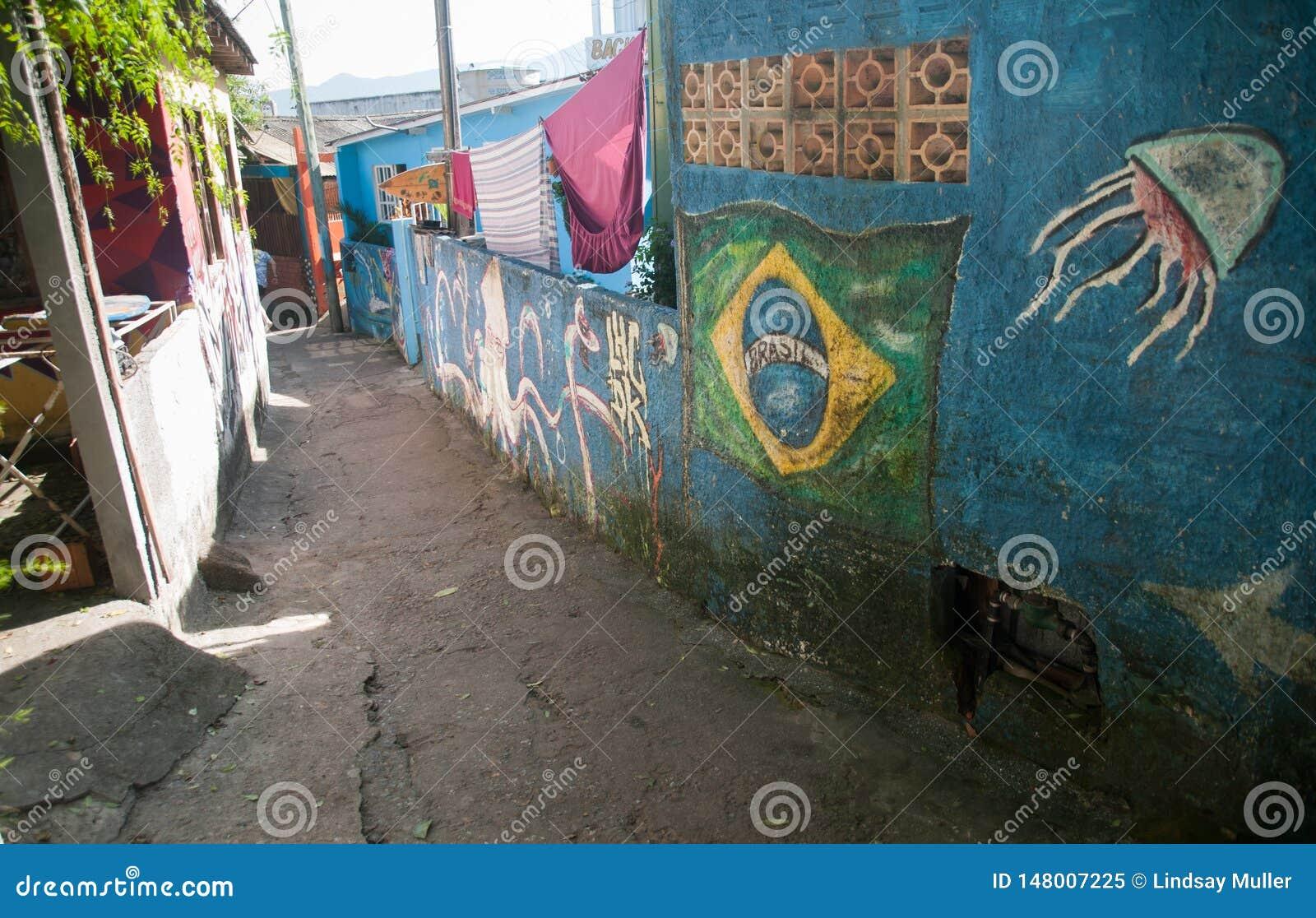 Graffiti Behandelde Steeg in Brazilië met Vlag