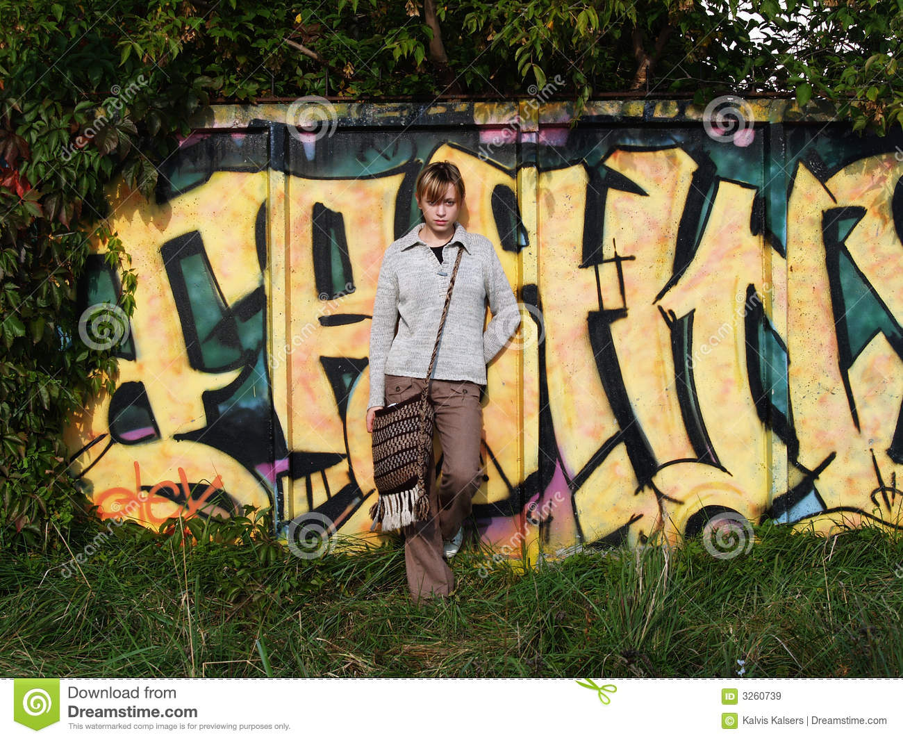Download Graffiti in nature stock image. Image of building, lifestyle - 3260739