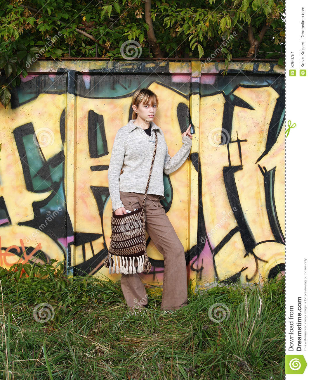 Download Graffiti in nature stock image. Image of decay, hair, culture - 3260751