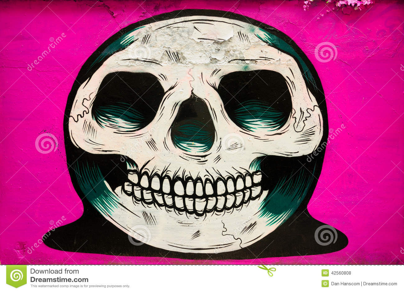Graffiti Skull Editorial Stock Photo Image 42560808