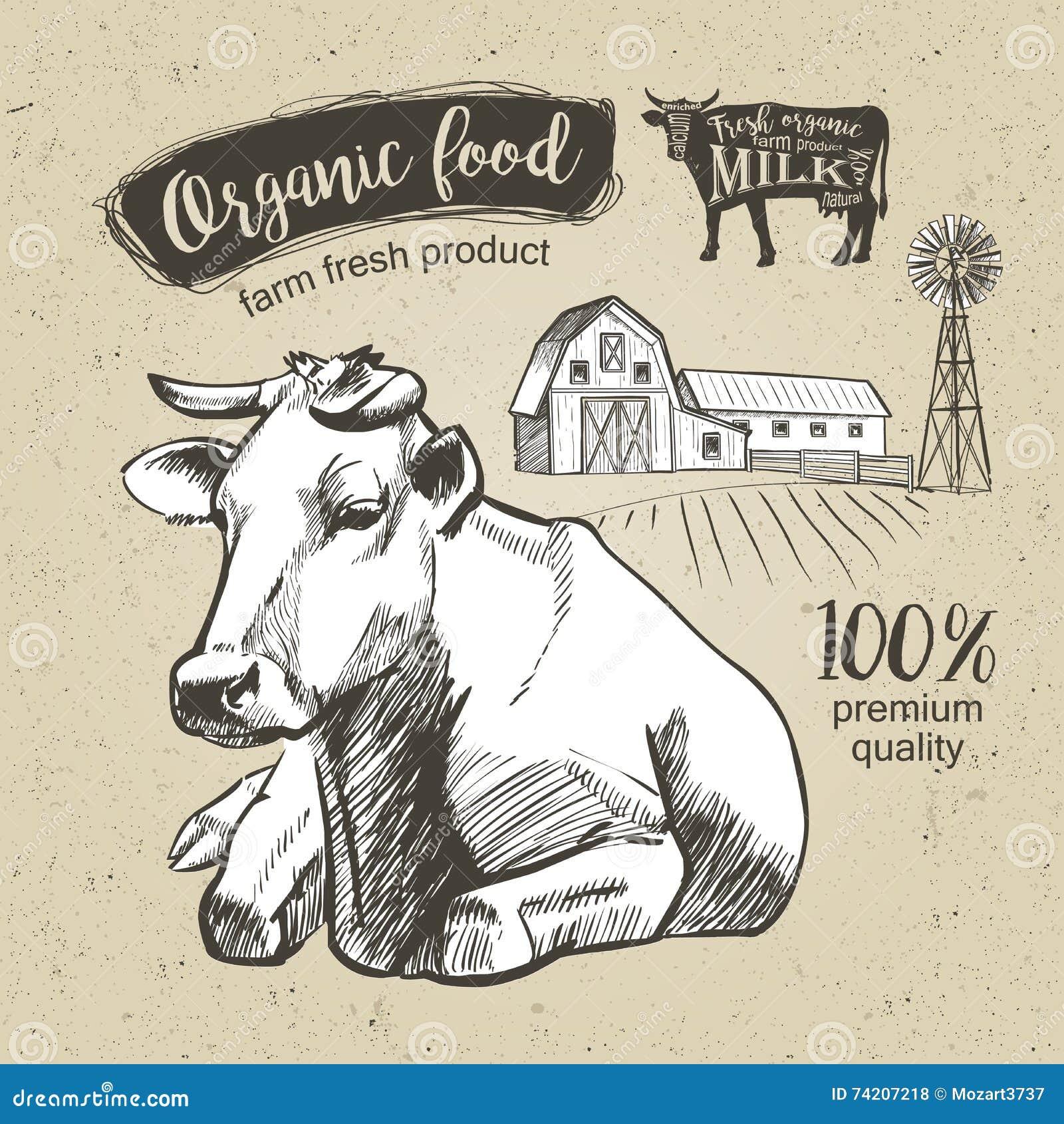 Grafico dell annata della mucca