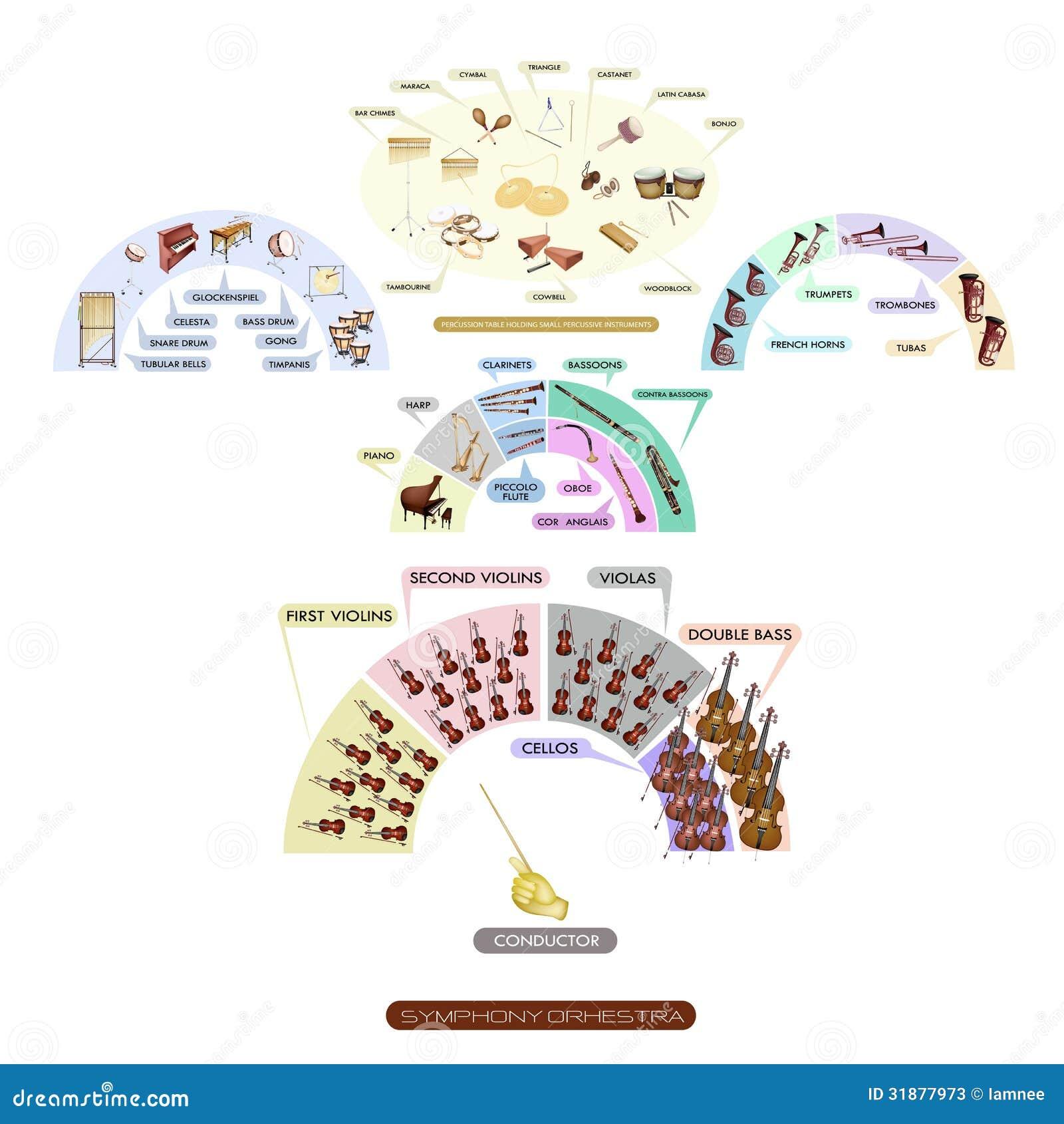 Grafico Della Disposizione Dei Posti A Sedere Dello