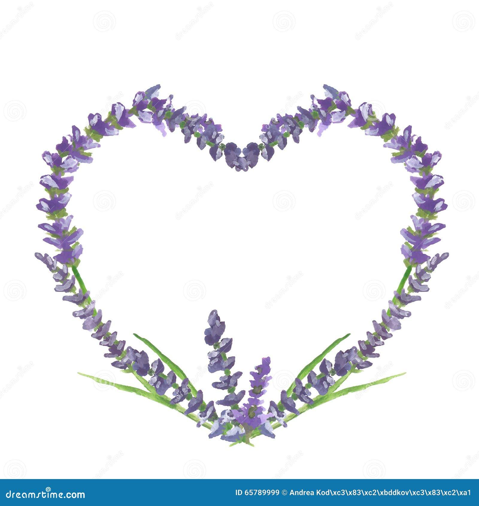Grafisk bevekelsegrund för för för lavendelhjärta, bröllop eller valentin, vattenfärgmålning, illustration