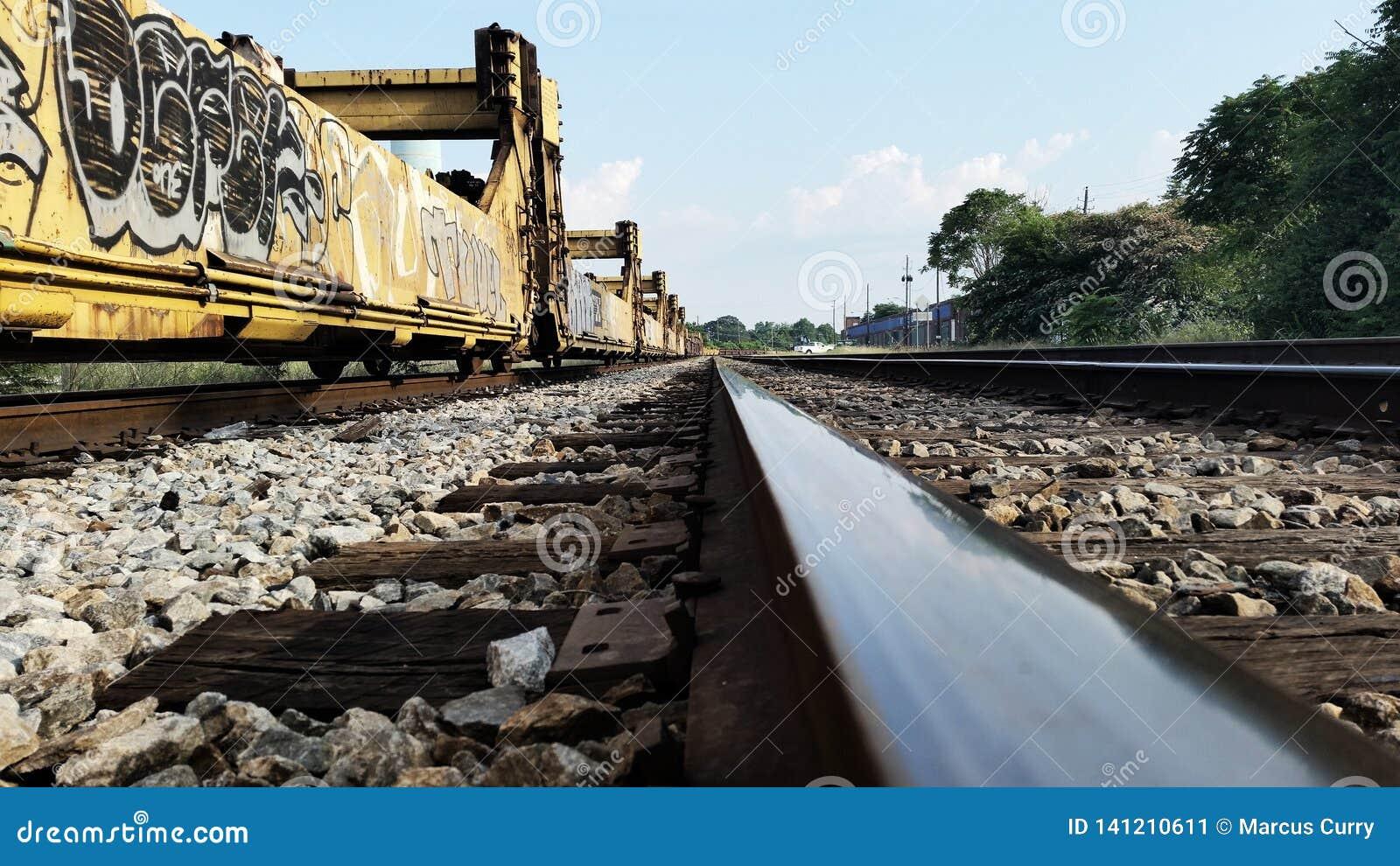 Grafittis em carros de trem em trilhas