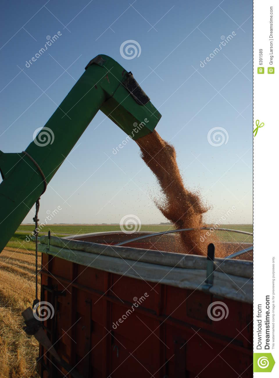 Grain Auger stock image  Image of minnesota, agriculture