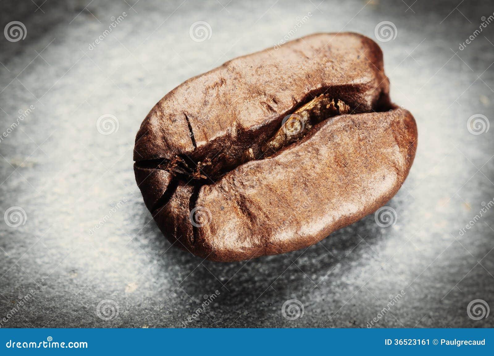 Grain de café sur le fond gris