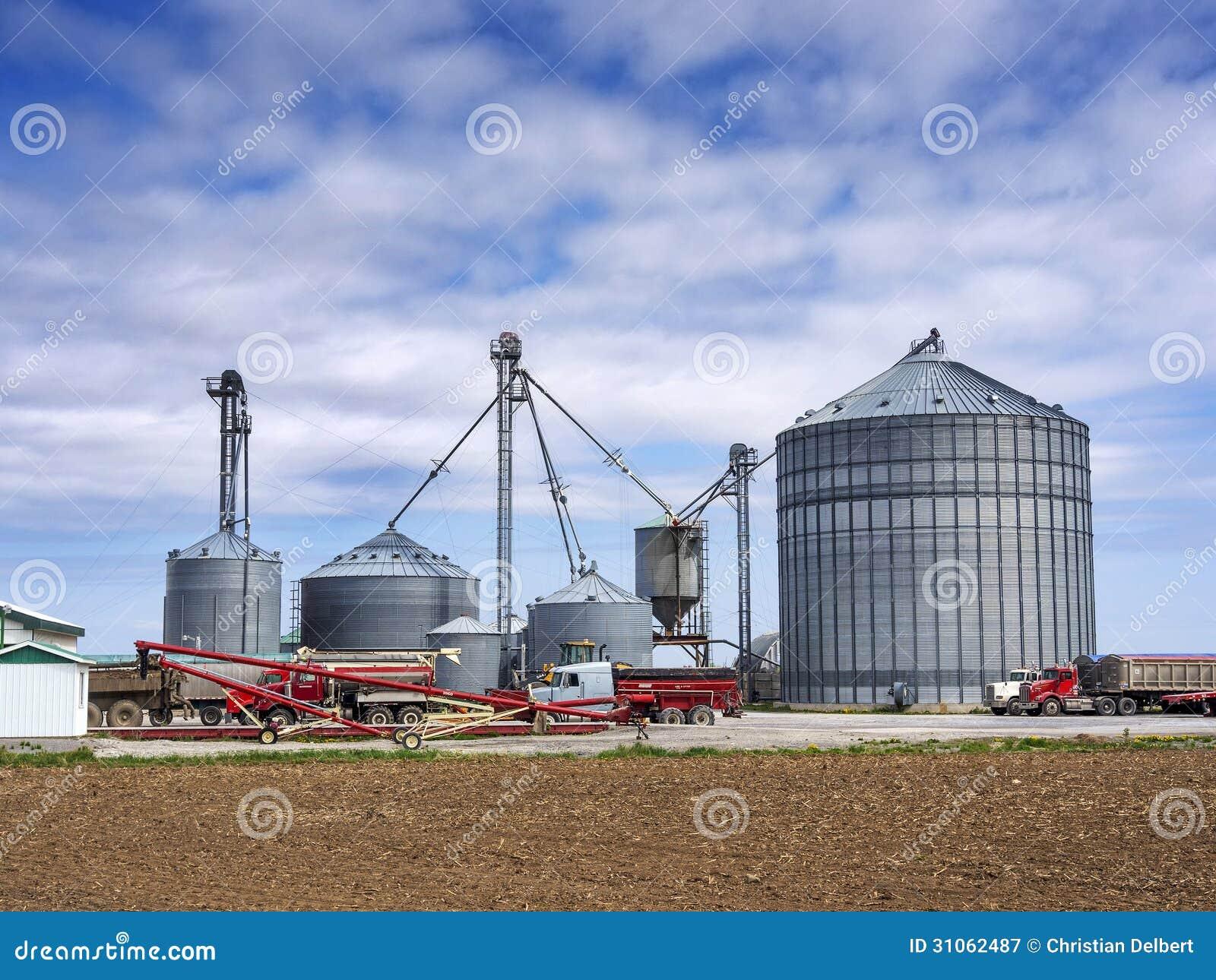 A Sample Wheat Farming Business Plan Template