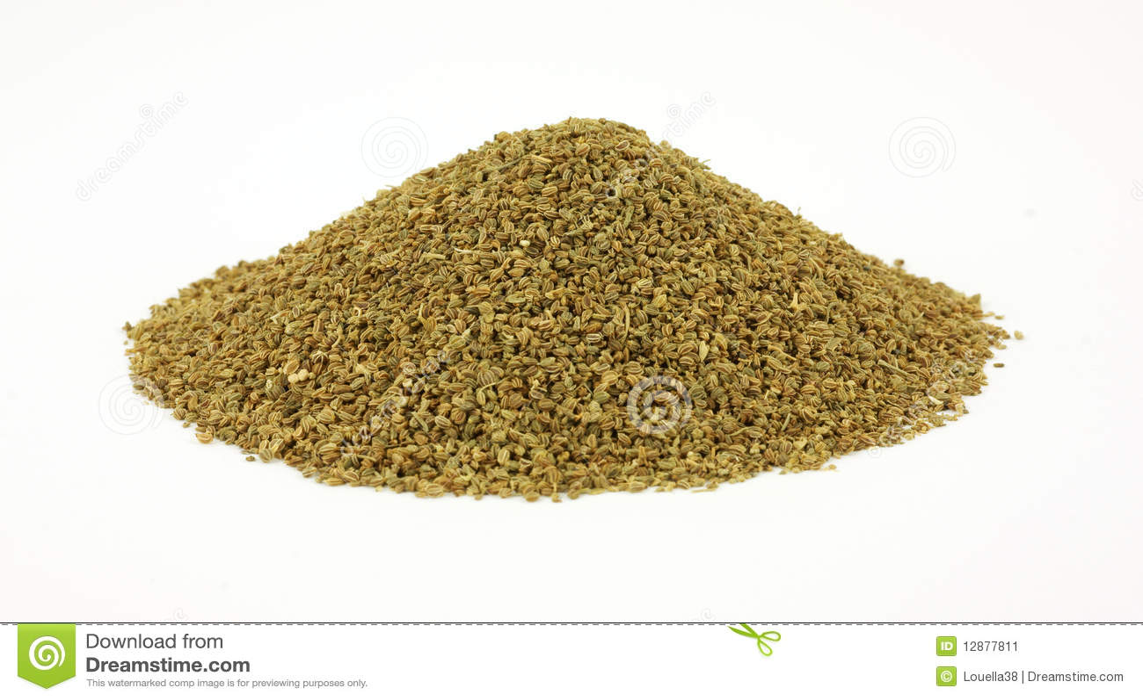 graines de celeri