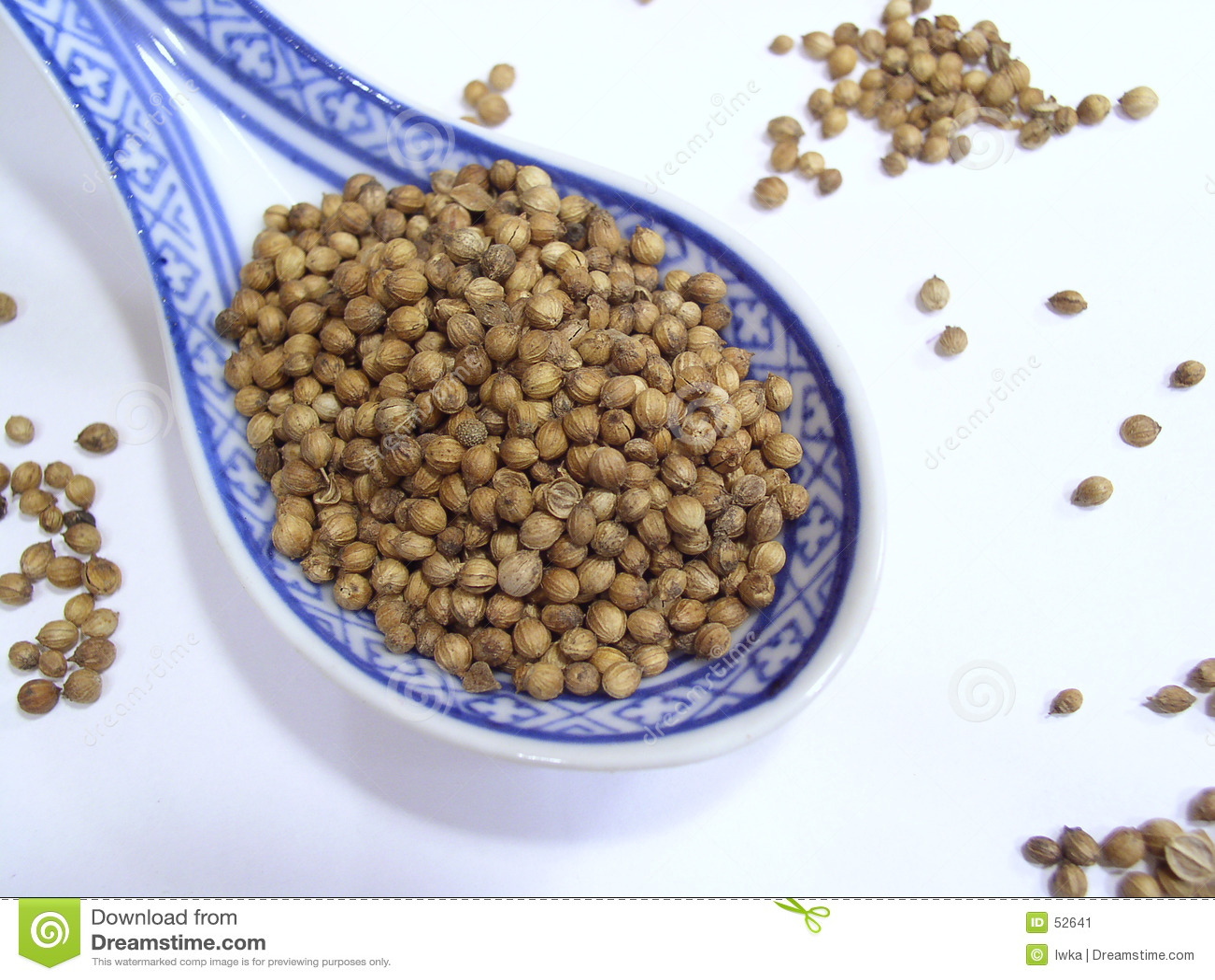 Download Graines de coriandre image stock. Image du goût, cuisine - 52641