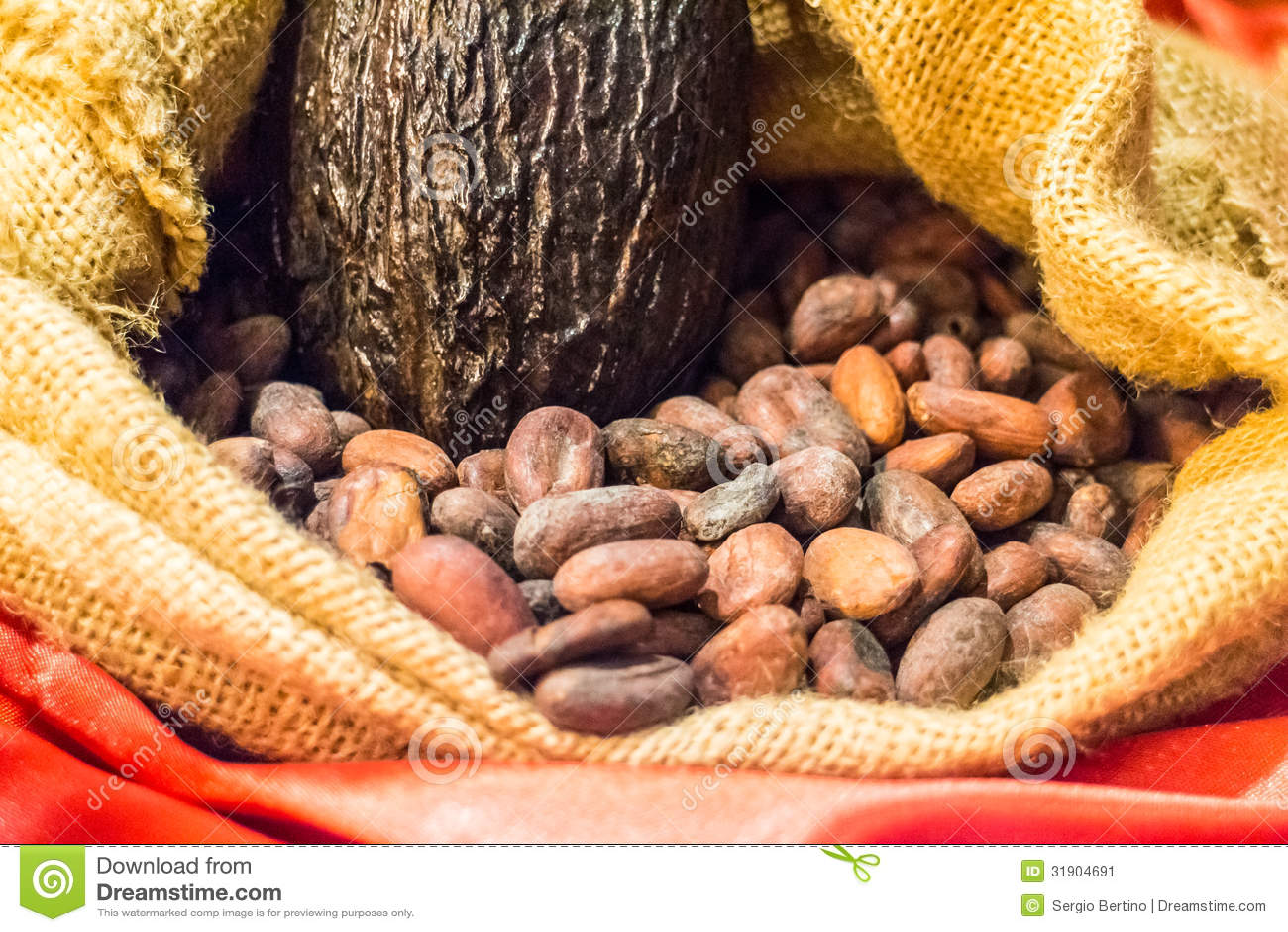 Graines Et Cosse De Cacao Crues En Toile De Jute Image Stock Image