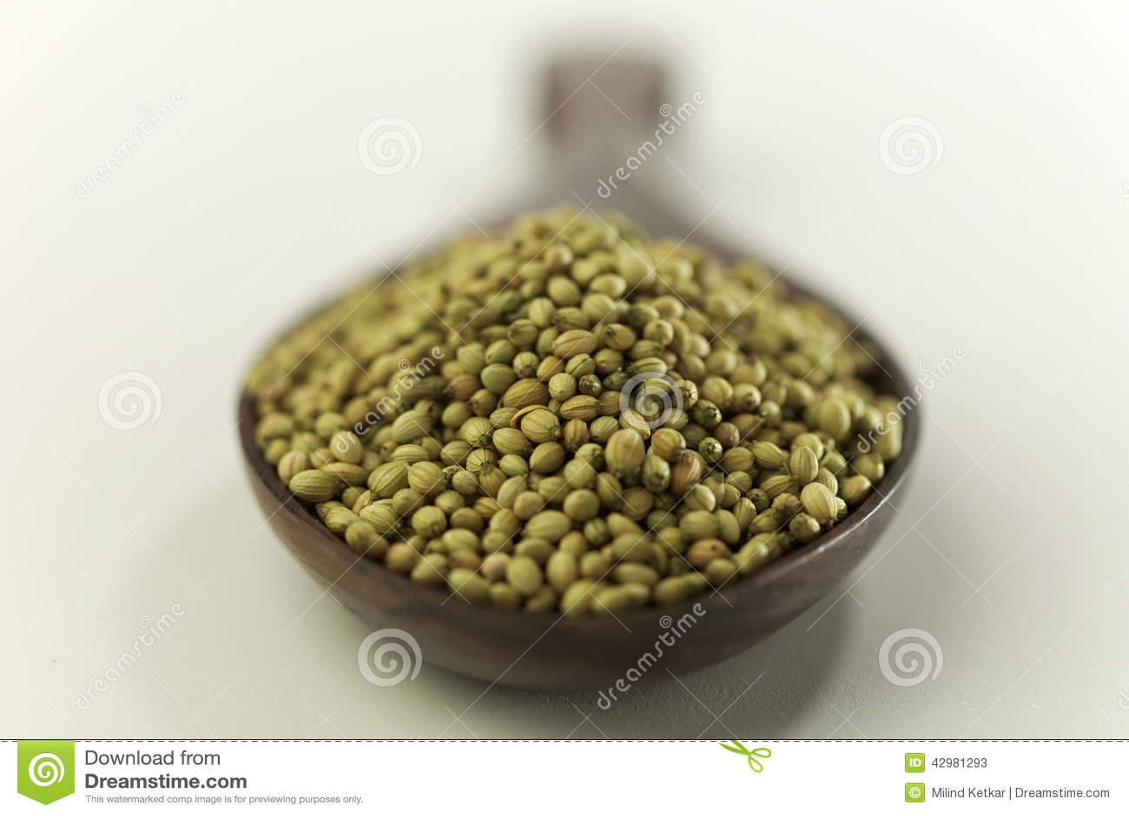 Graines indiennes d épice-coriandre