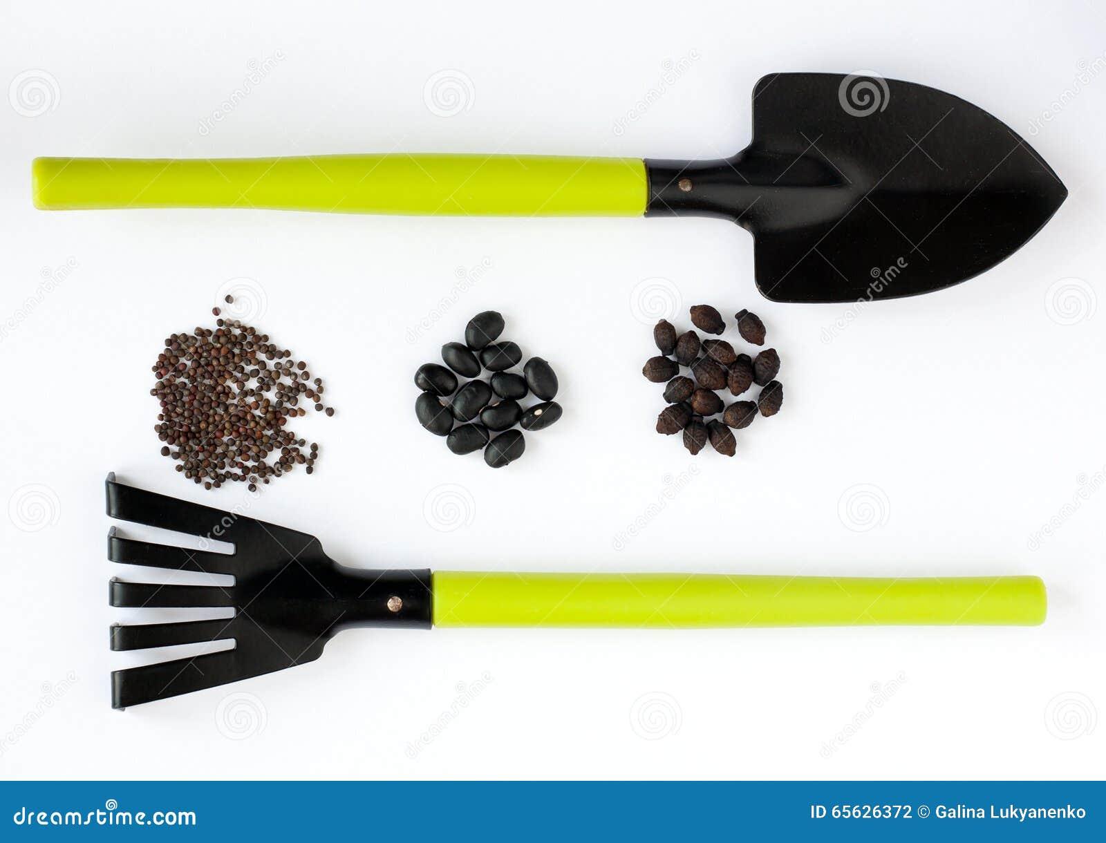 Graines, pelle et râteau noirs différents