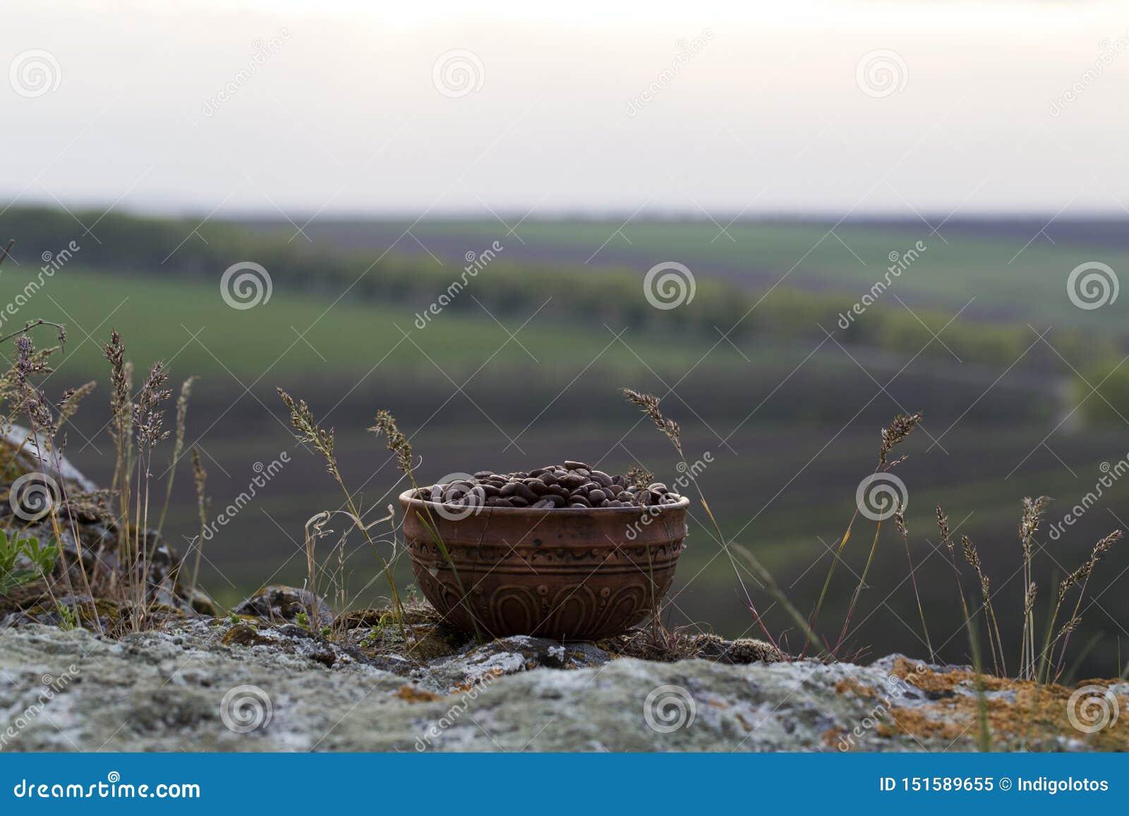 Grains de café dans la cuvette en céramique