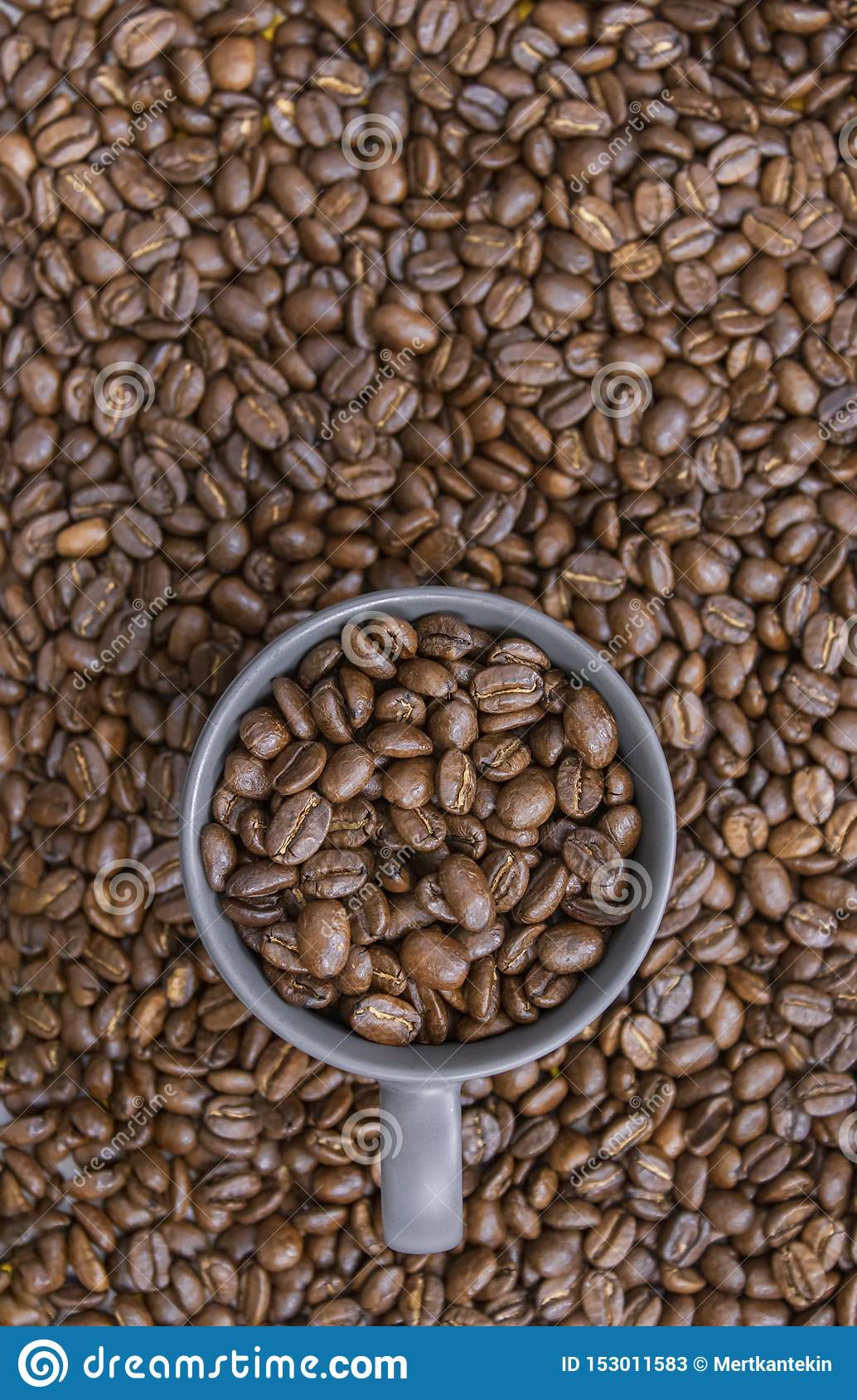 Grains de café dans la tasse foncée sur le fond mélangé de grains de café