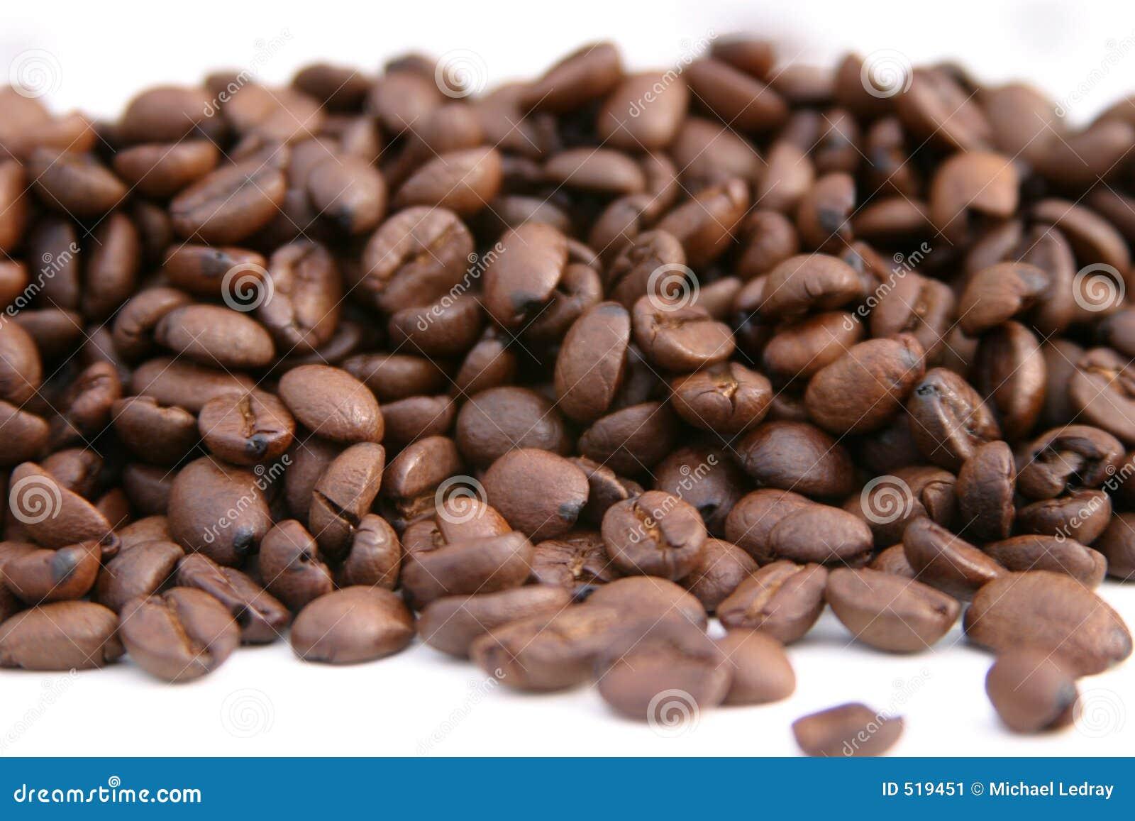 grains de caf non la terre sur un fond blanc image stock image 519451. Black Bedroom Furniture Sets. Home Design Ideas