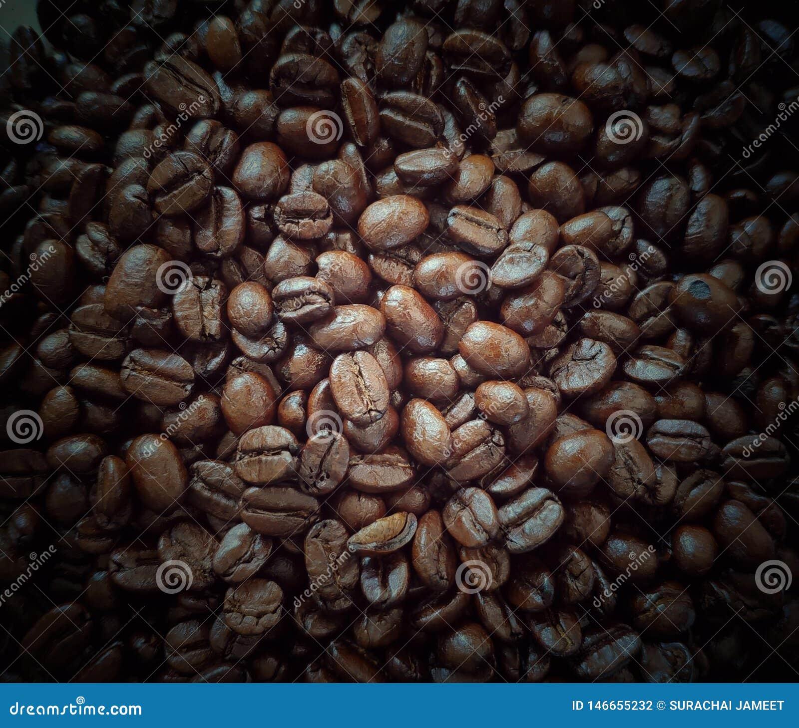 Grains de café rôtis, pleine image de cadre