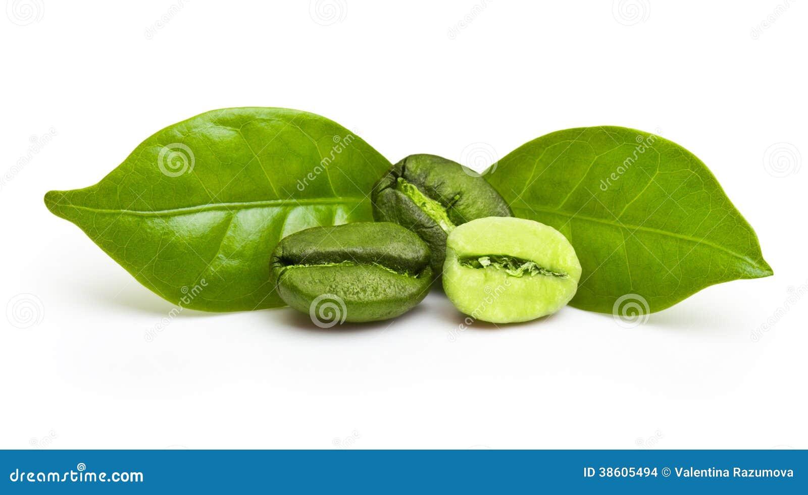 Grains de café verts avec la feuille