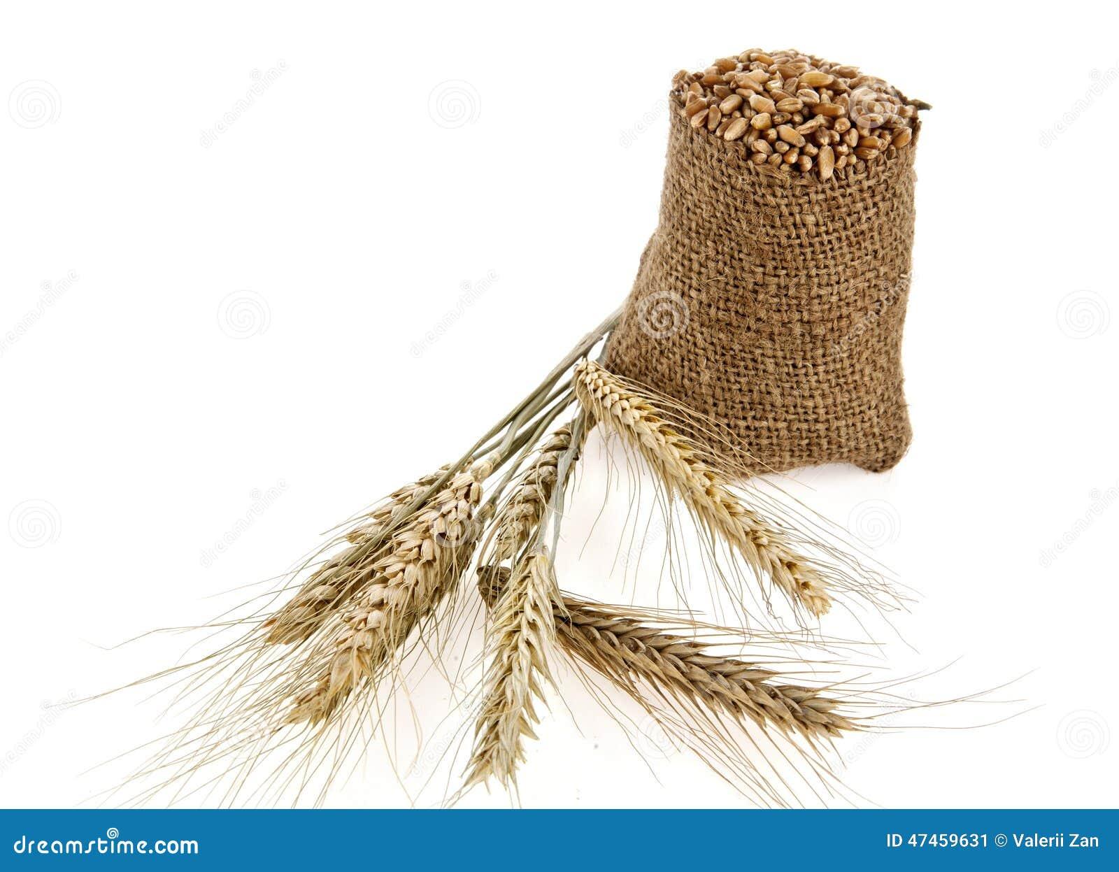 Sack Of Wheat Grains Bag Stock Photo | CartoonDealer.com ...