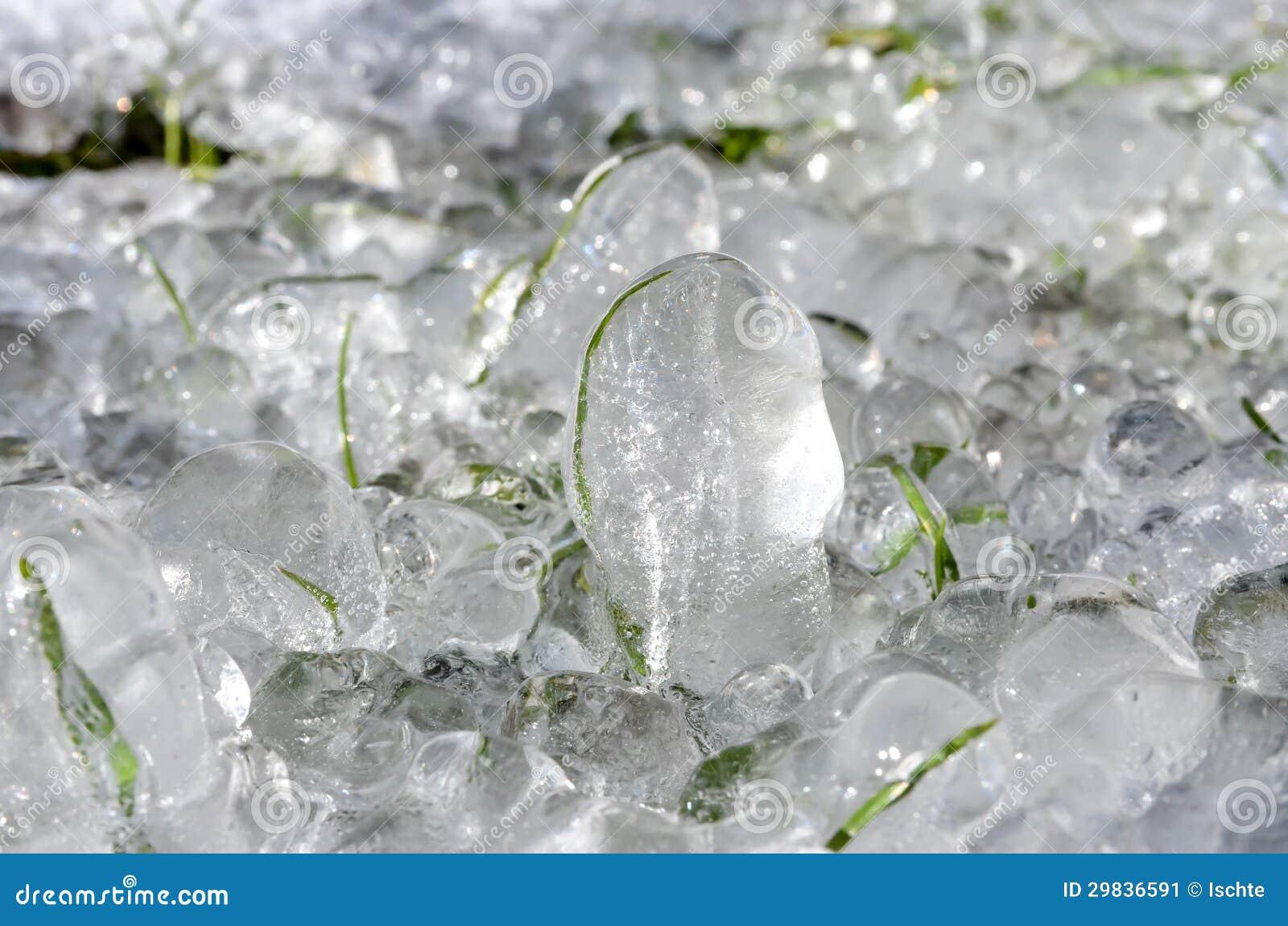 Grama congelada