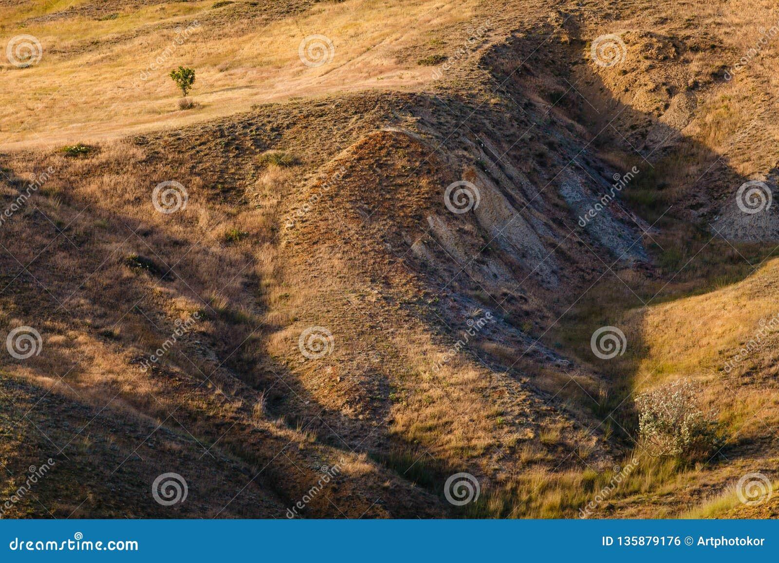 Grama seca que cresce em terras montanhosas Problema da seca Falta da água