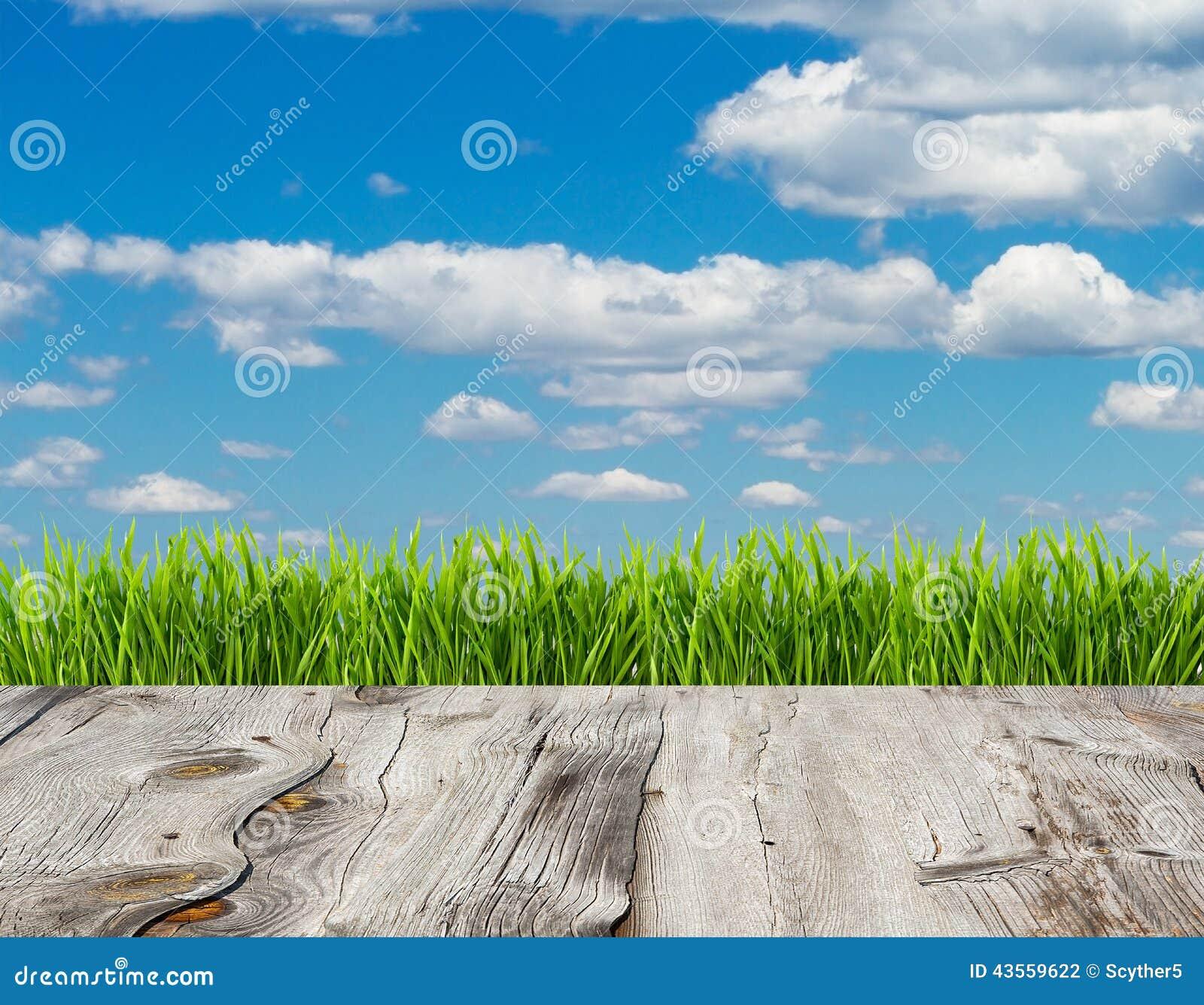 Grama verde e céu azul no fundo de madeira do assoalho