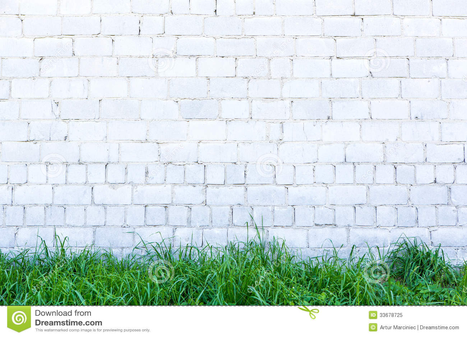 Grama verde e parede branca