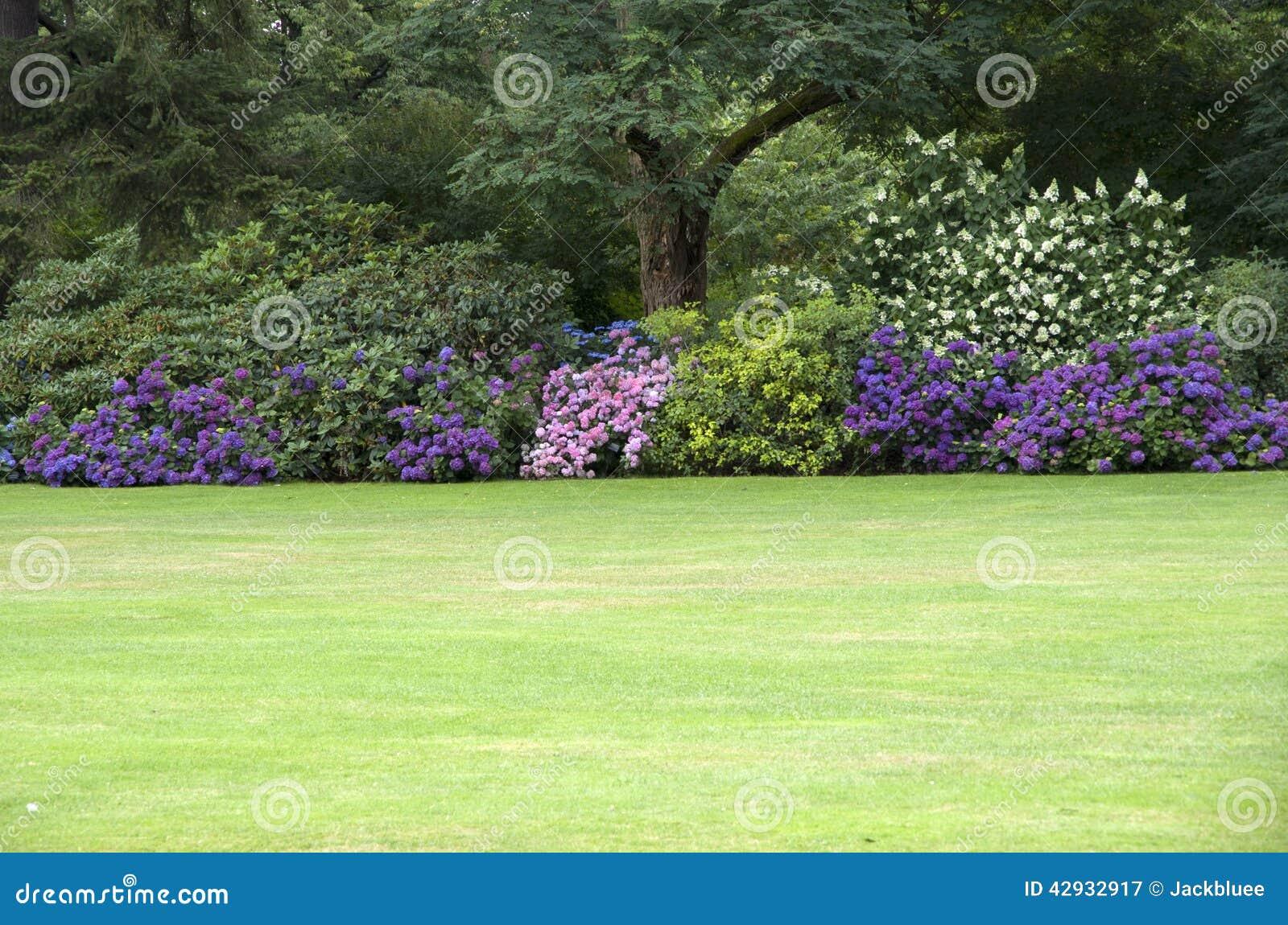 Gramado perfeito do jardim de flores