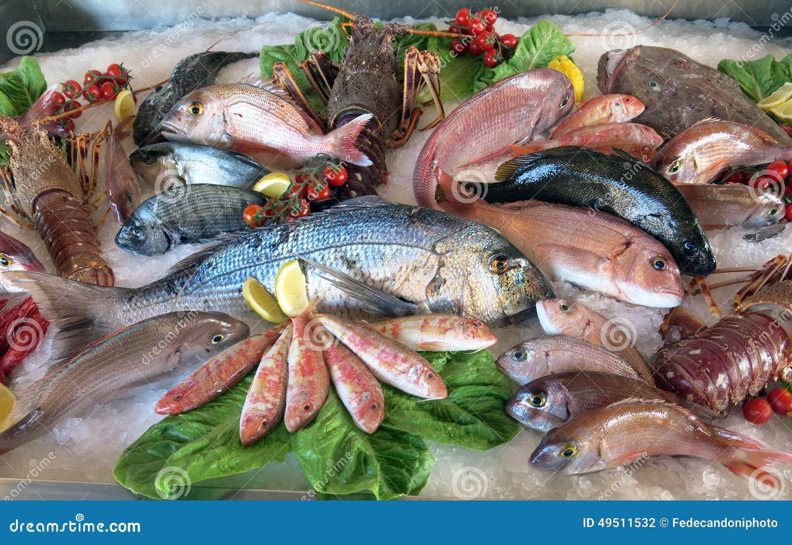 Gran brema de mar blanco mucha peces de agua salada en el - Pagina di colorazione del pesce ...