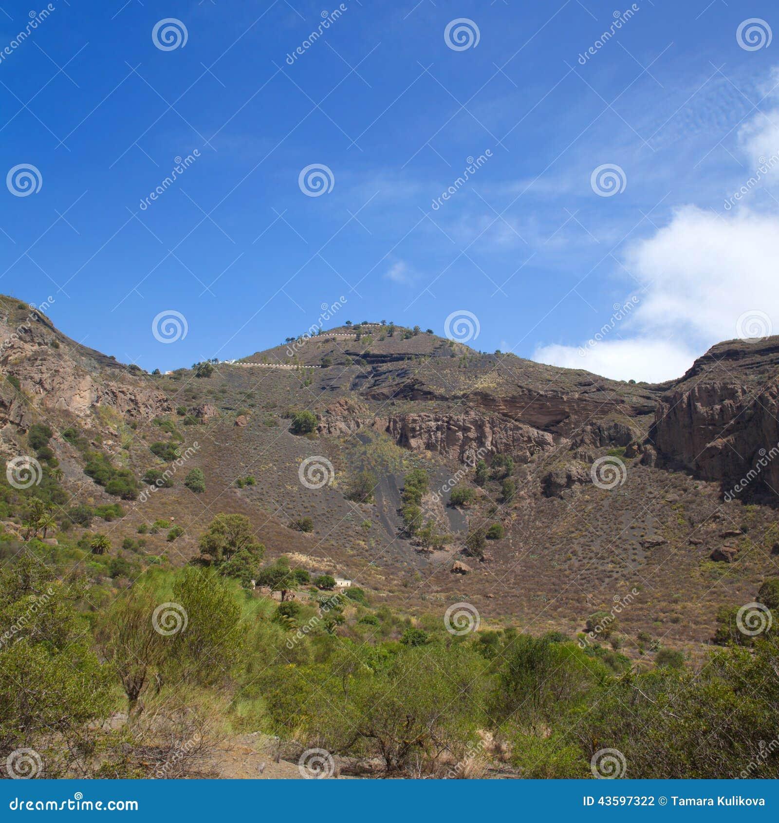Gran Canaria, Caldera De Bandama Stock Photo - Image of