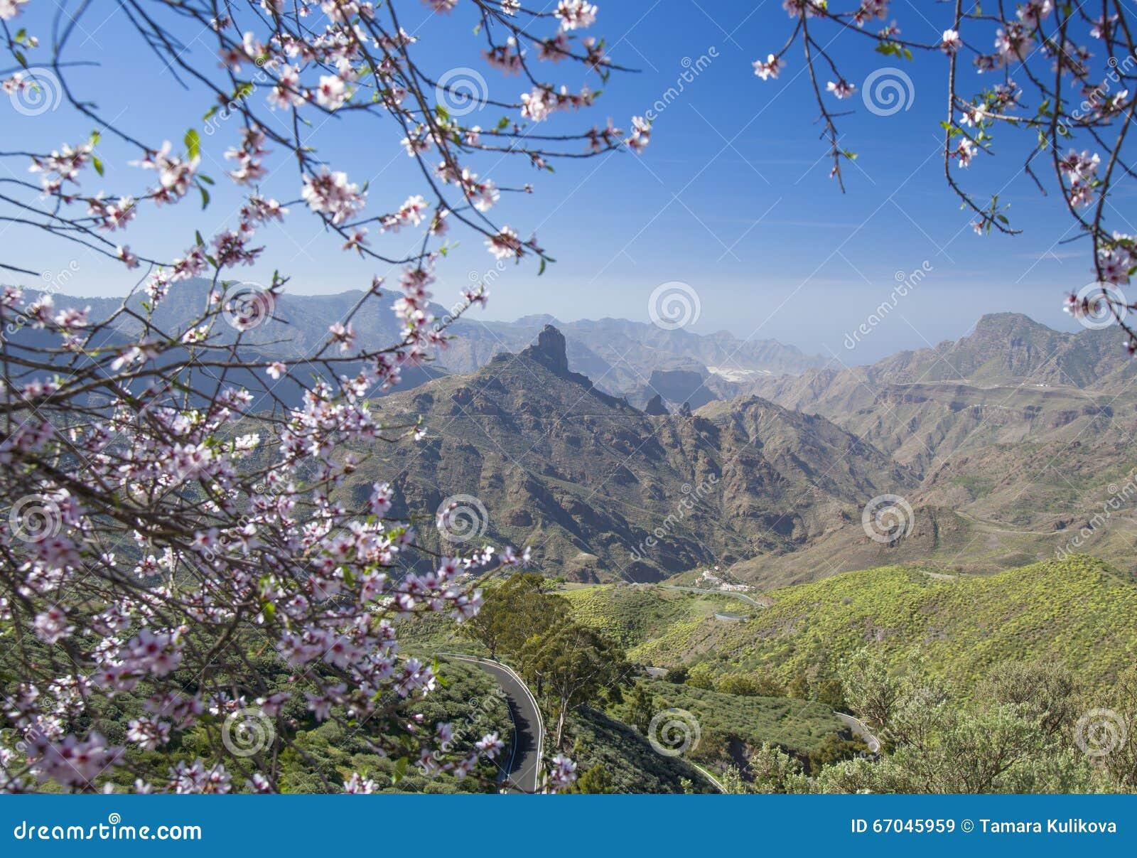 Gran Canaria, Caldera de Tejeda i Januari