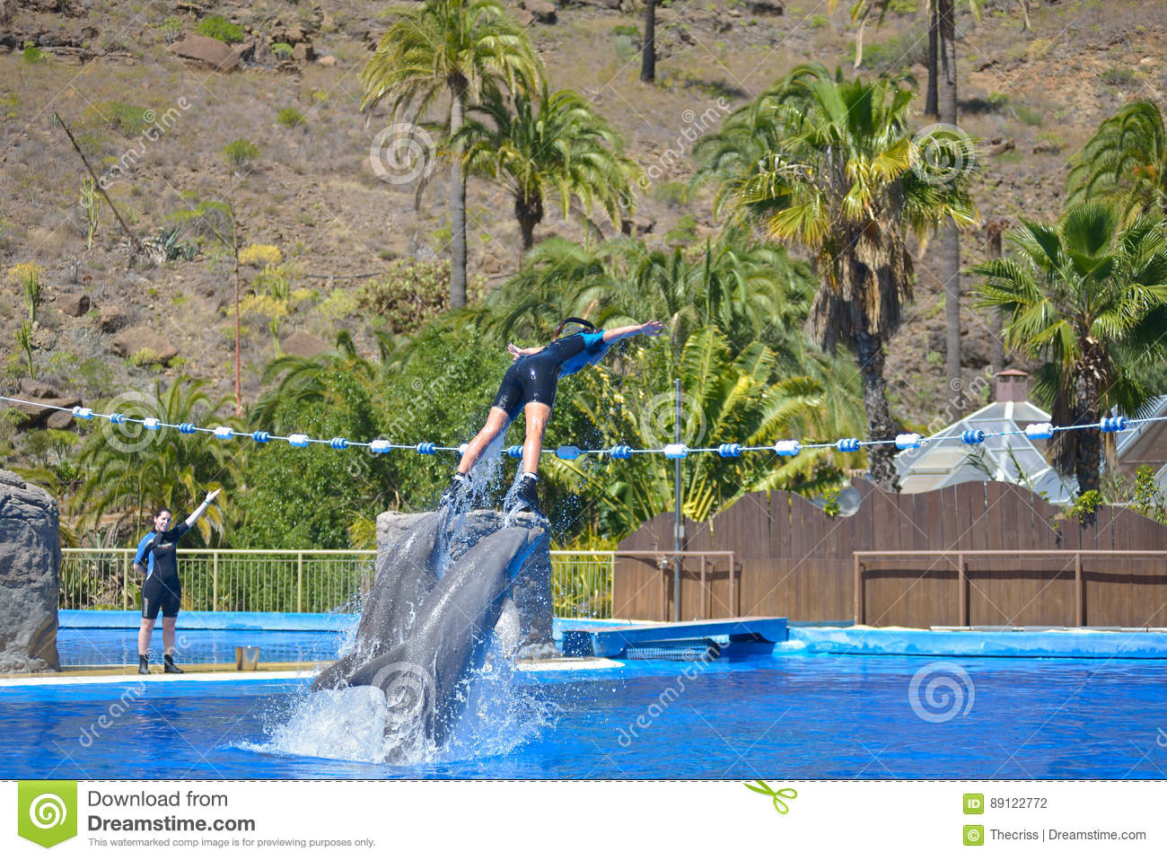 GRAN CANARIA, SPAIN - MARCH 10 2017 - Dolphins Show At Palmitos Park In Maspa...