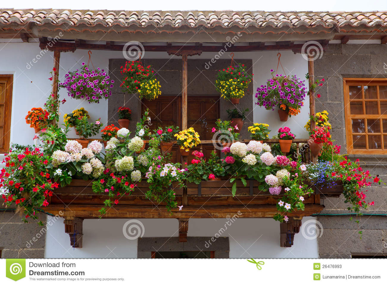 gran canaria teror flower pot balcony stock image image. Black Bedroom Furniture Sets. Home Design Ideas