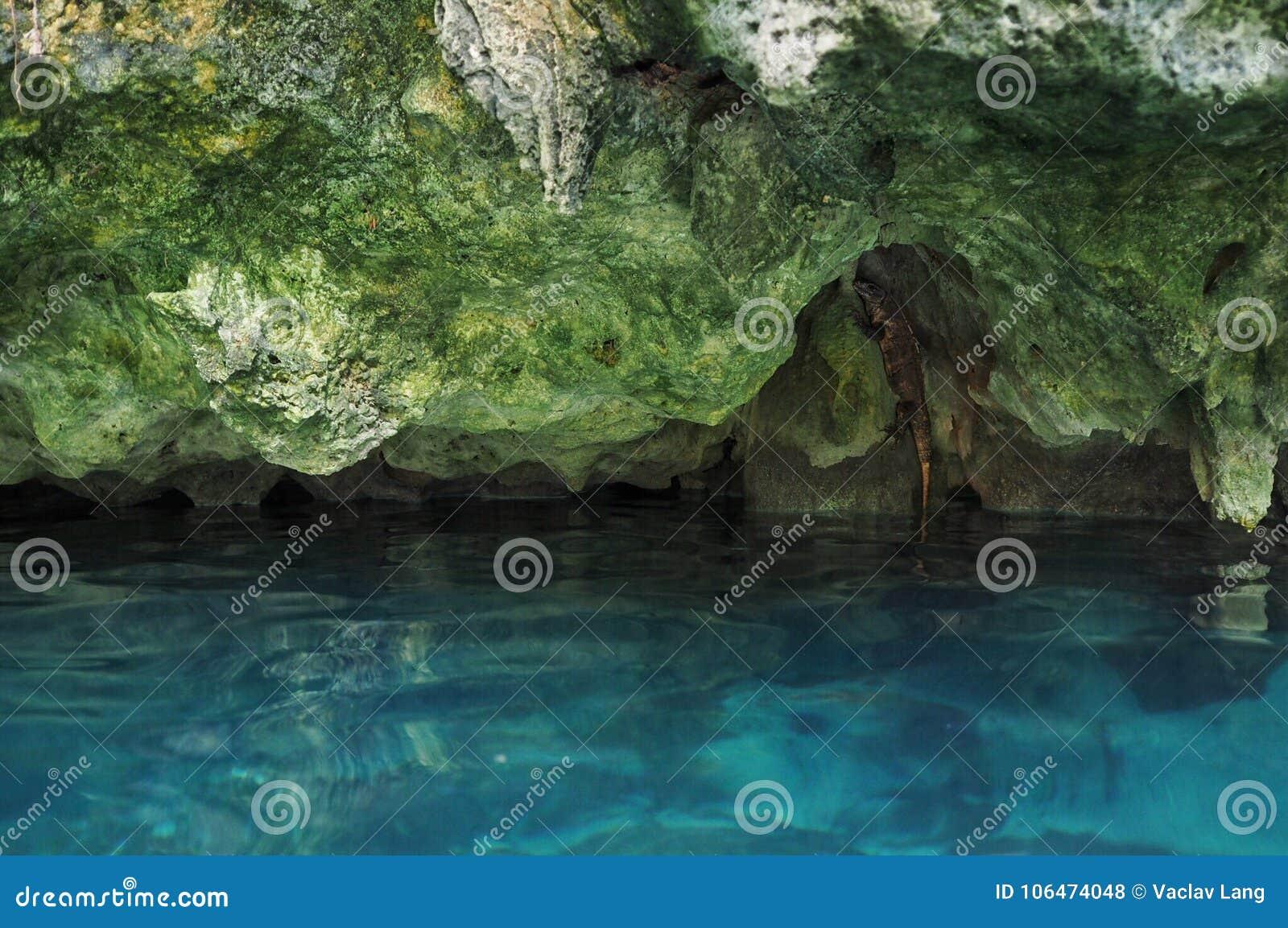 Gran Cenote in Yucatan, Messico
