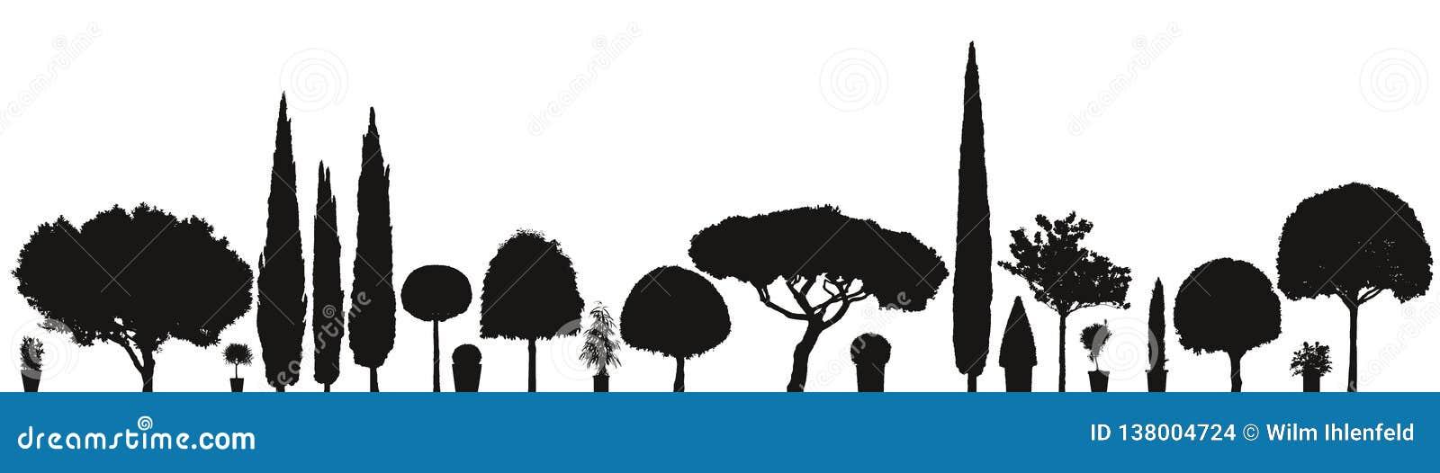 Gran variedad de plantas y de árboles del vector