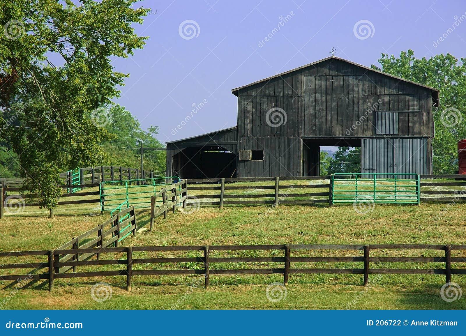 Granaio del ranch del cavallo