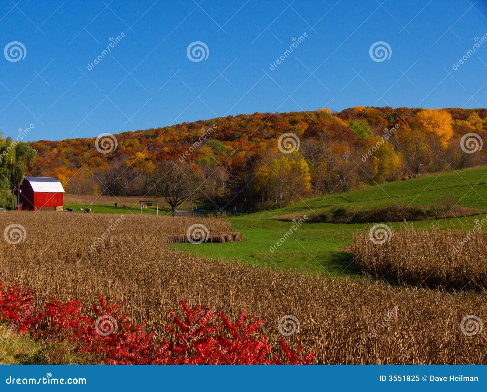Granaio di colore rosso di autunno