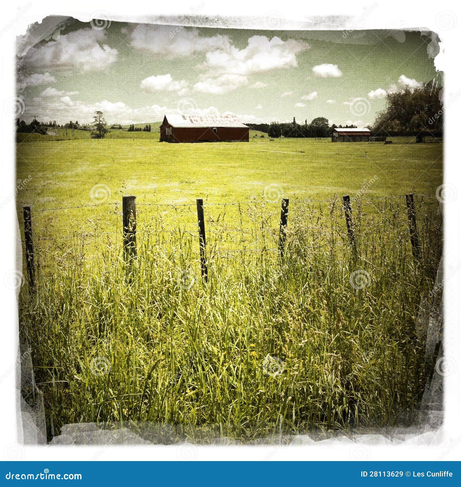 Granaio nel campo