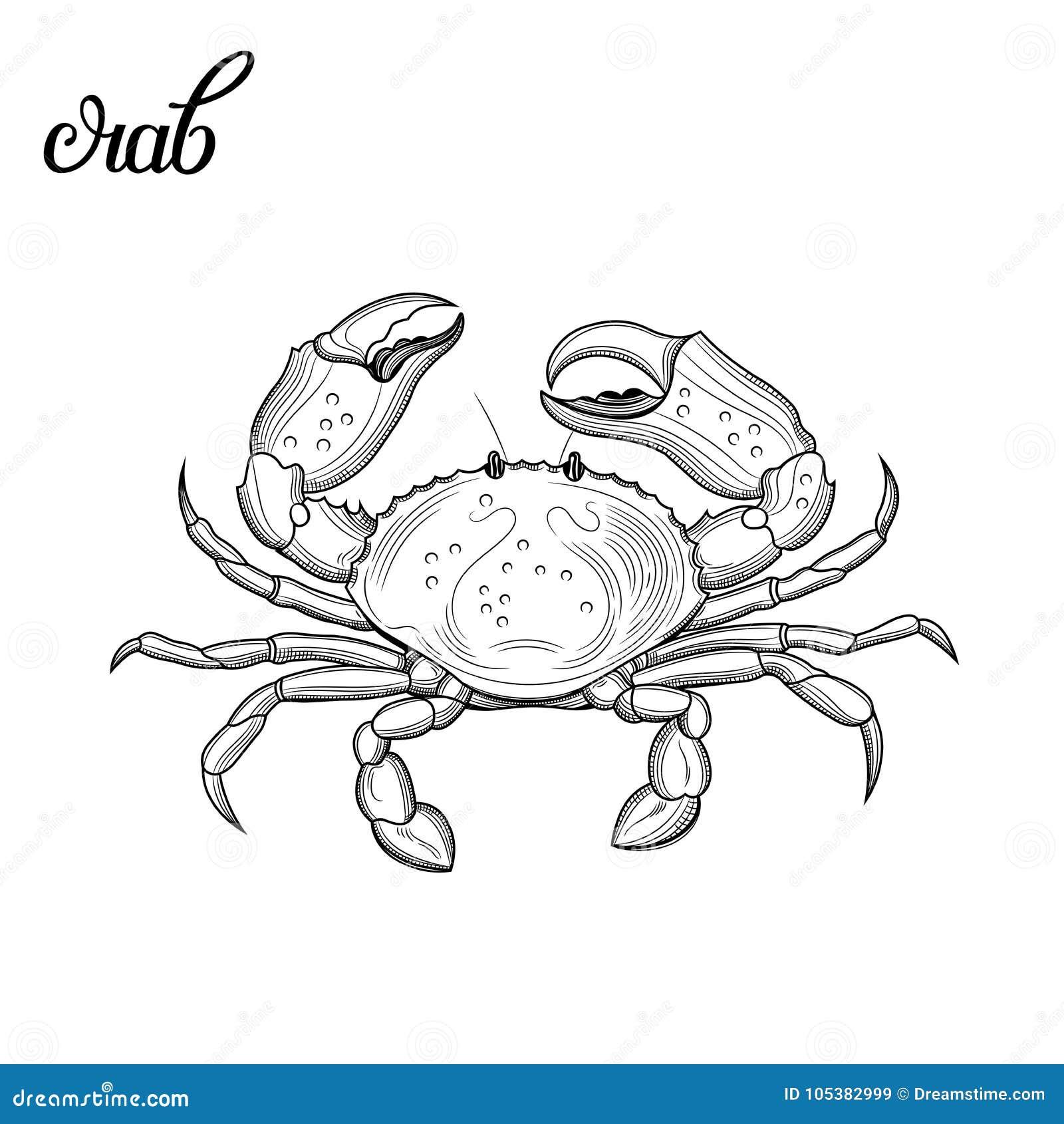 Granchio Frutti di mare