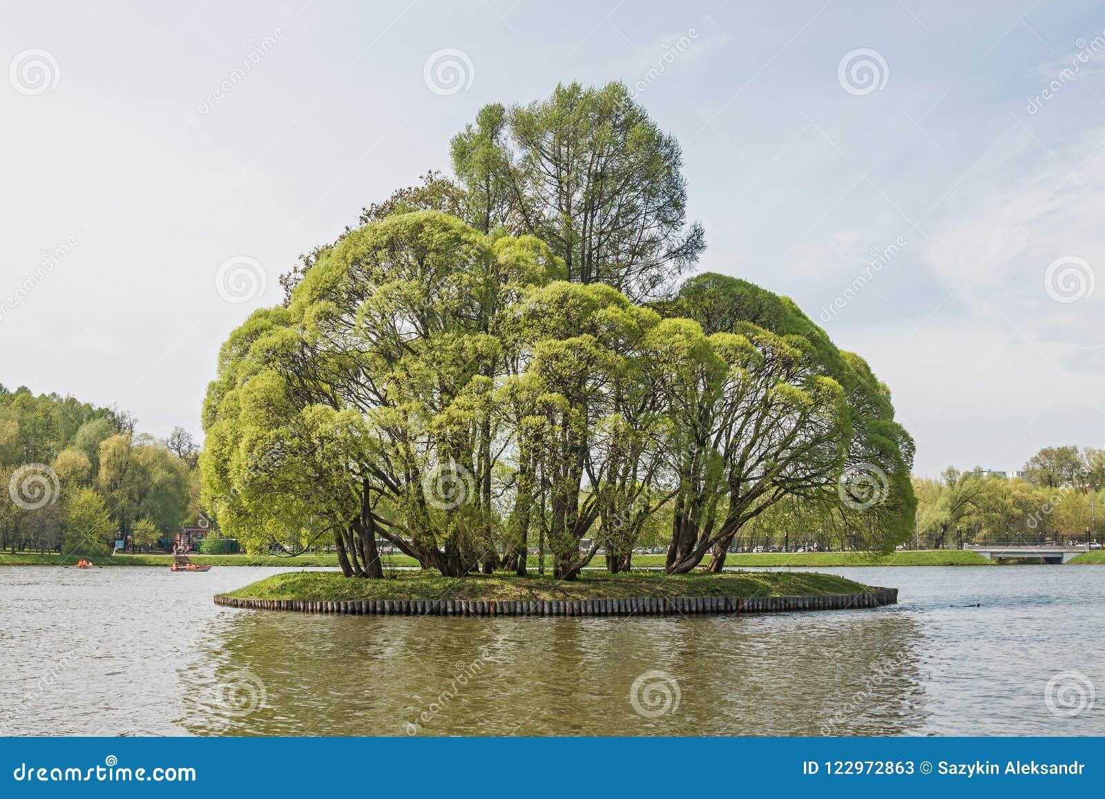 Grand étang de Tsaritsyn sur le domaine Tsaritsyno Secteur du sud moscou Fédération de Russie