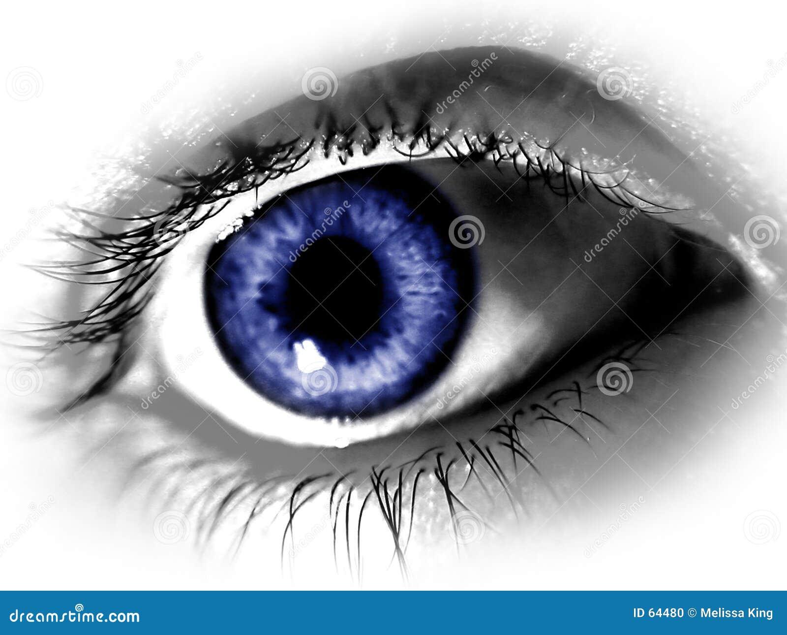 Grand œil bleu