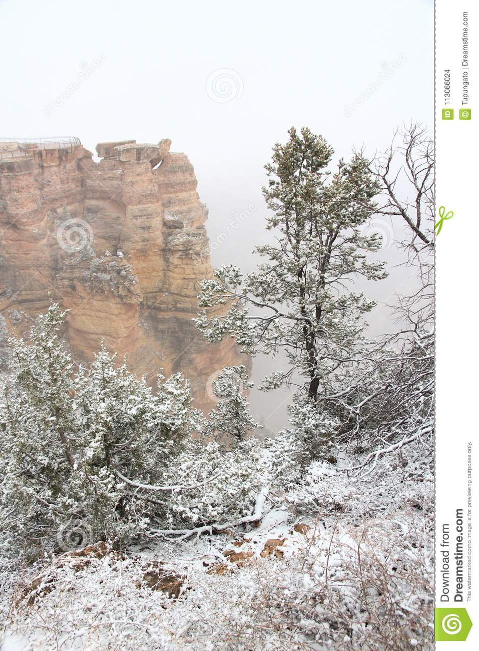 Fog In Grand Canyon Stock Photo Image Of Snow American